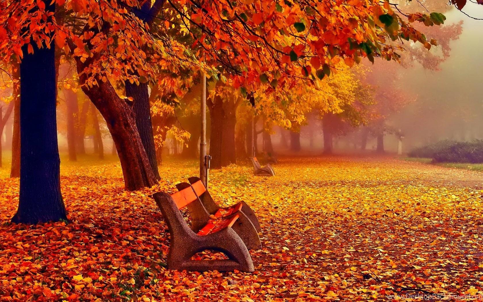 autumn fall wallpapers november desktop background. Black Bedroom Furniture Sets. Home Design Ideas