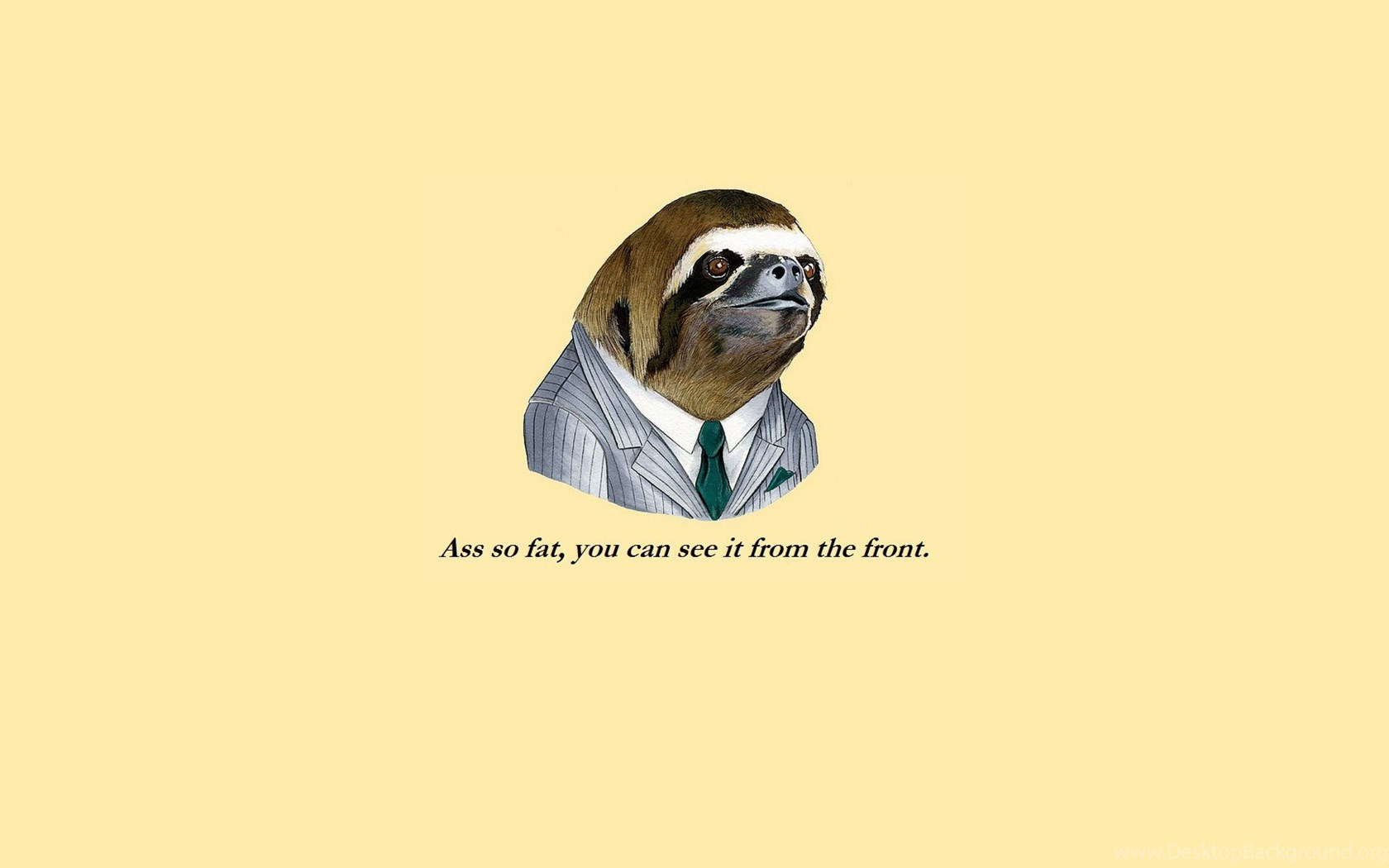 Funny Meme Phone Wallpapers : Funny sloth face meme hd wallpapers desktop background