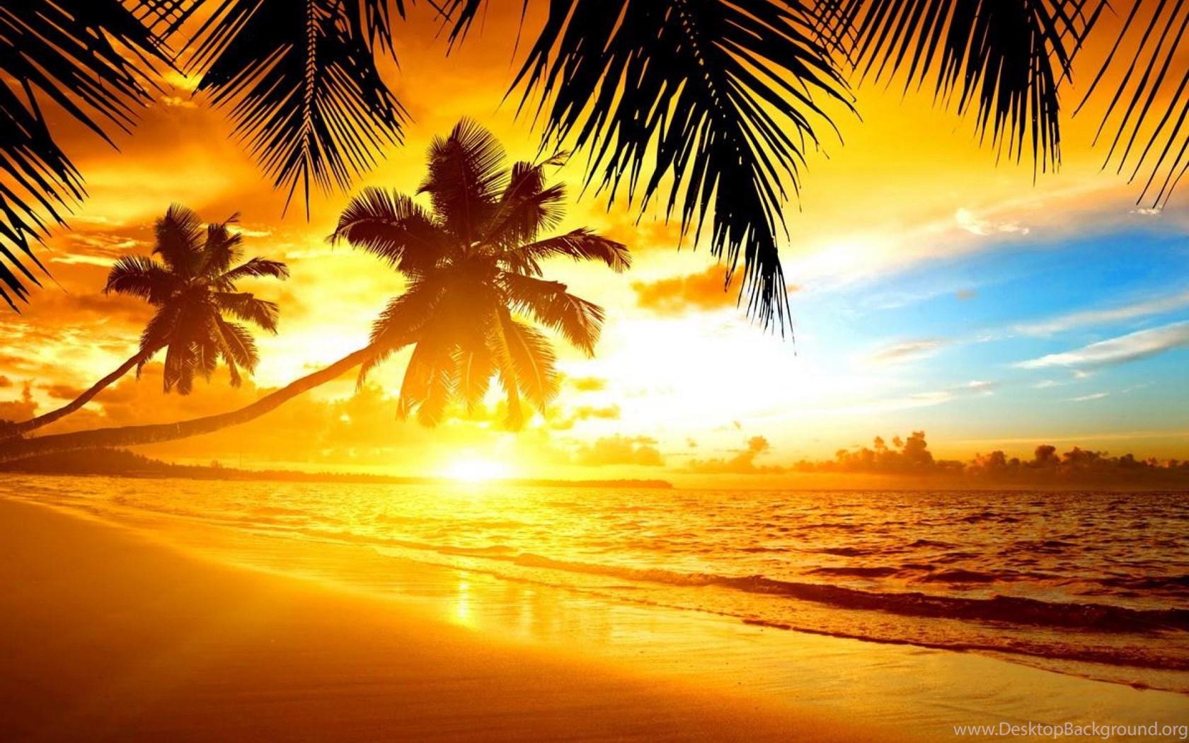 Tropics Palm Trees Sun Beach 4k Hd Desktop Wallpaper For: TROPICAL SUNSET WALLPAPER ( Desktop Background