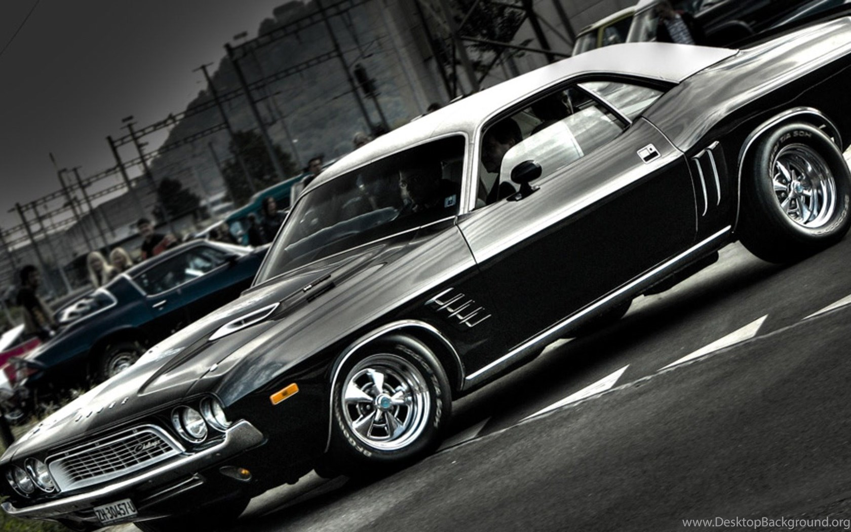 australian muscle cars hd wallpapers download topcarpicture desktop