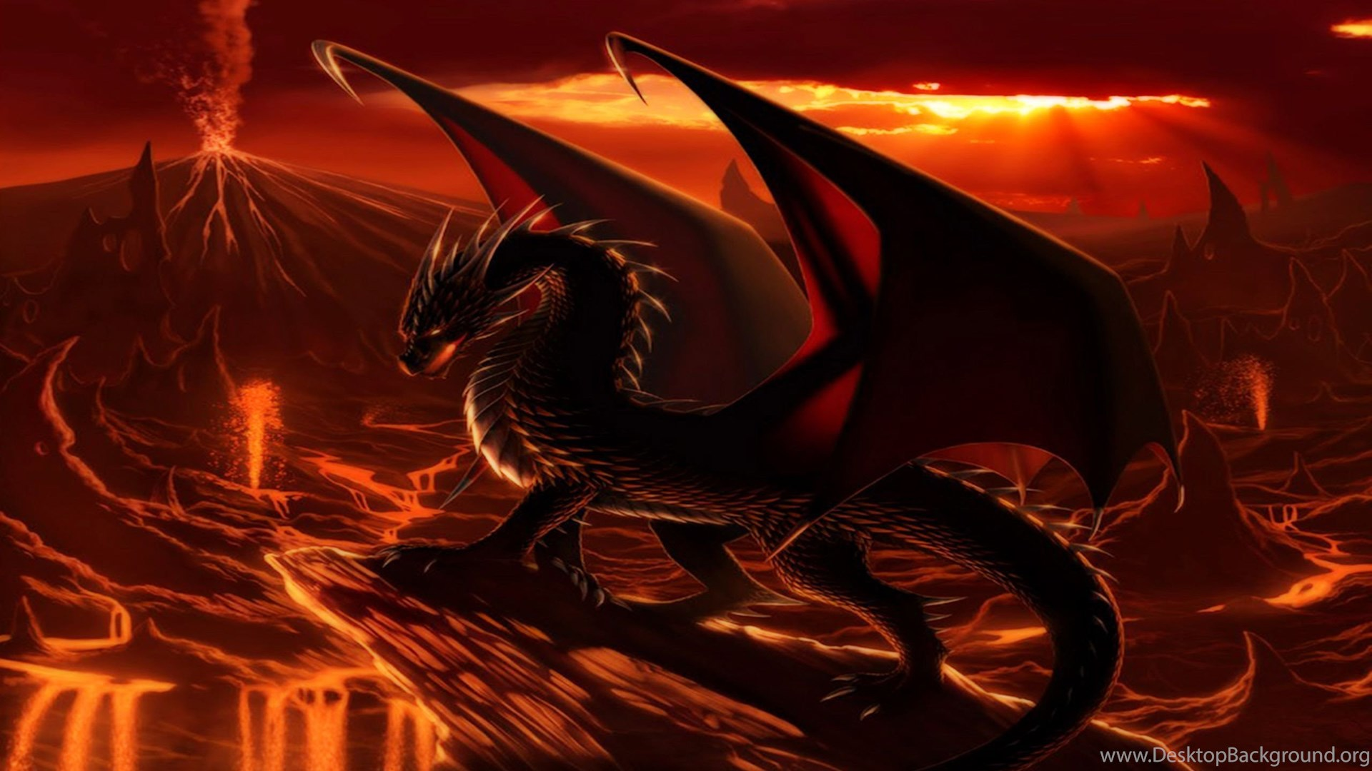 Fire Dragon Wallpaper Backgrounds Desktop Background
