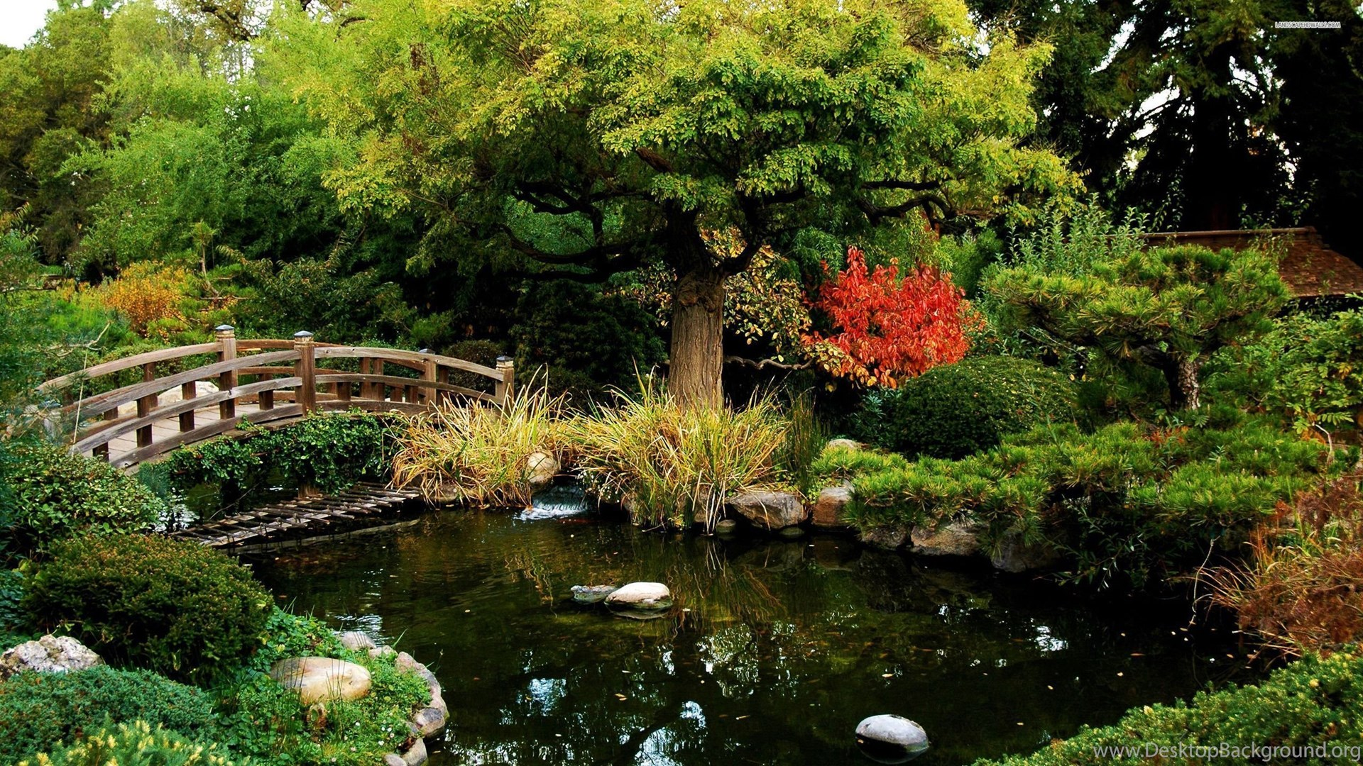 Japanese Garden Wallpapers: Splendid Japanese Garden Wallpapers Desktop Background