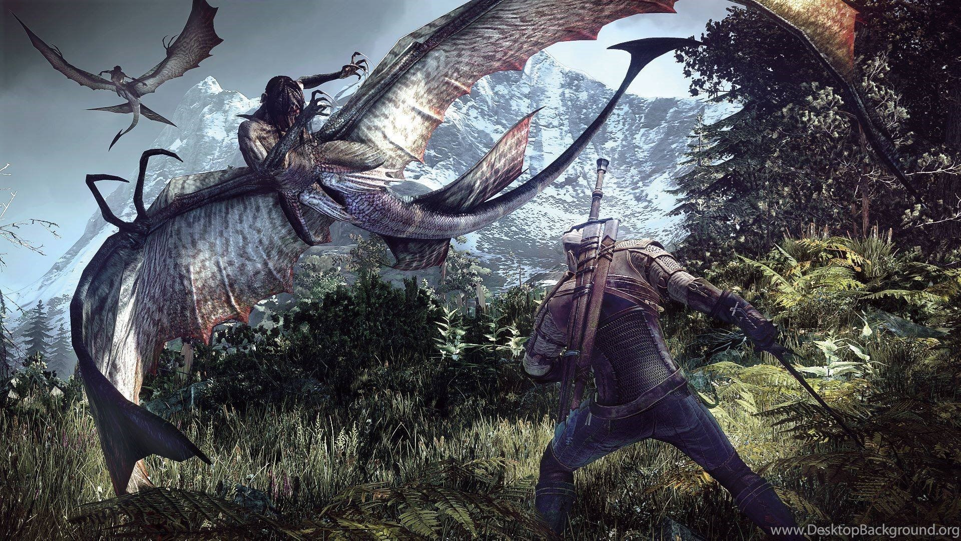 304 The Witcher 3 Wild Hunt Hd Wallpapers Desktop Background