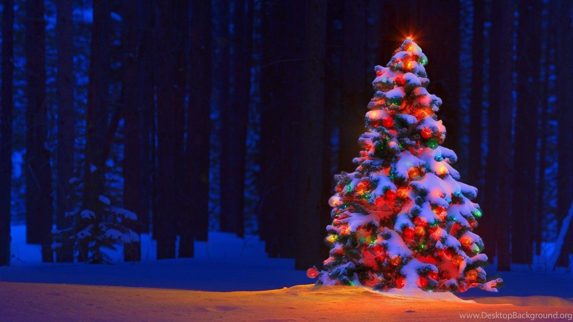 Christmas Lights Wallpapers HD Pictures Desktop Background