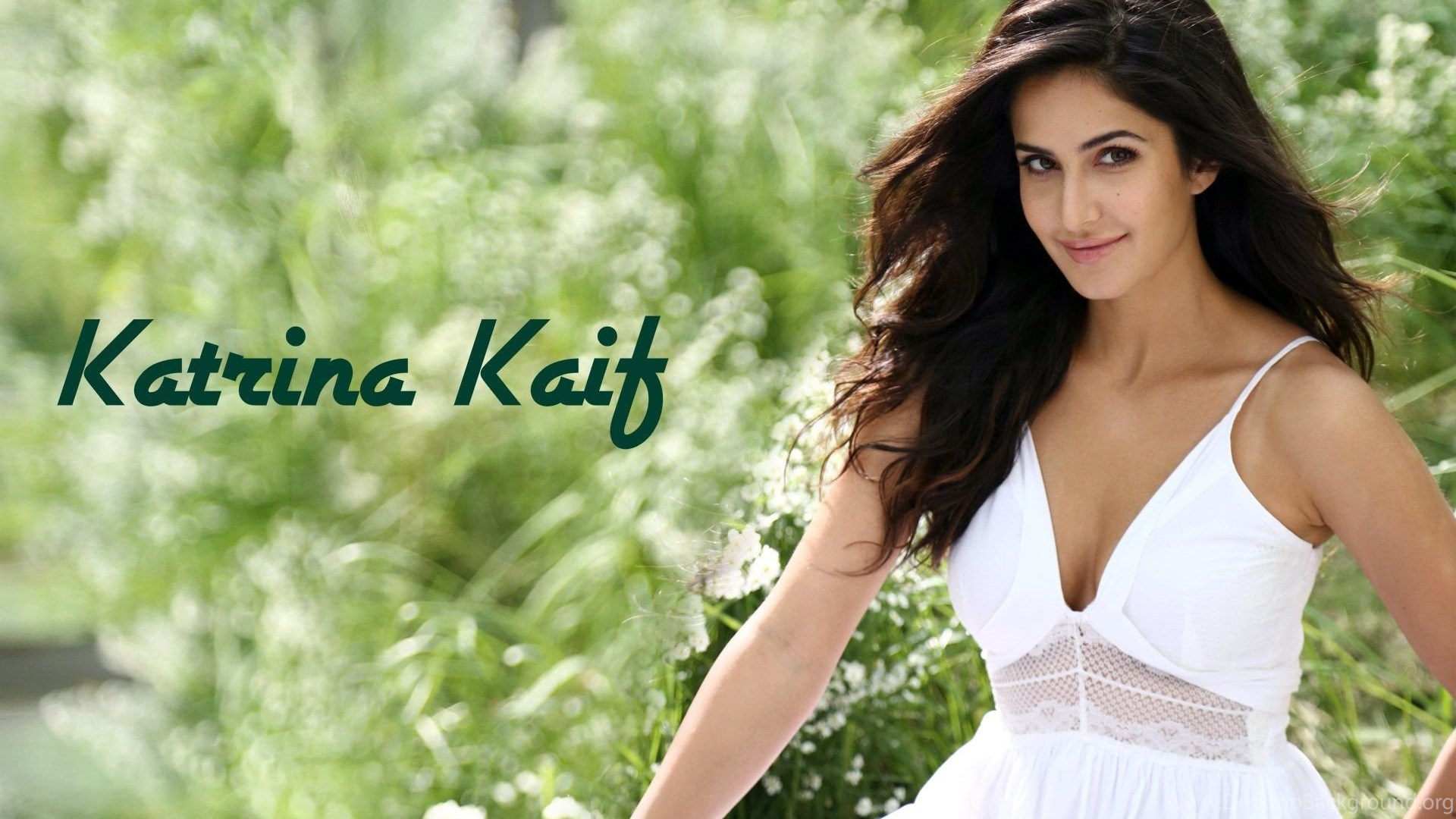 Katrina Kaif Pretty Bollywood Indian Girl Hd Wallpapers Wallpapers