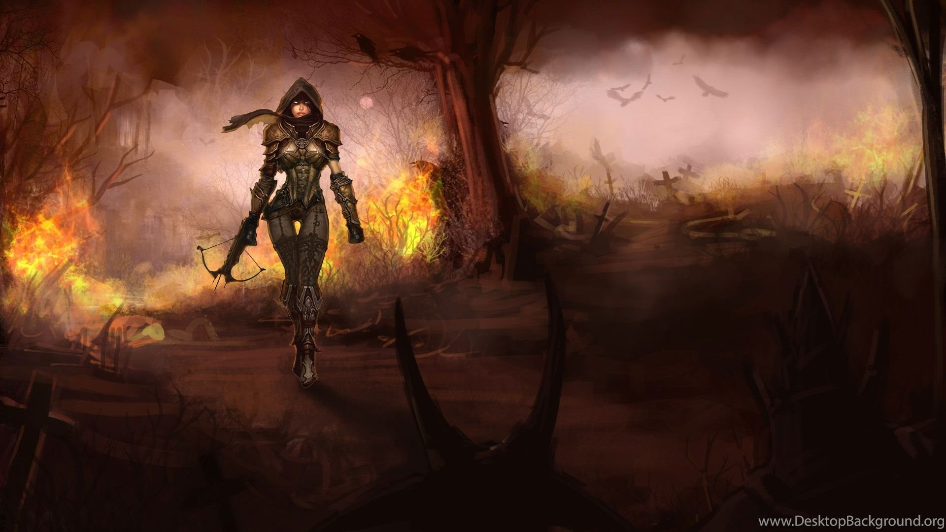 Diablo 3 Demon Hunter Wallpapers 199863 Desktop Background