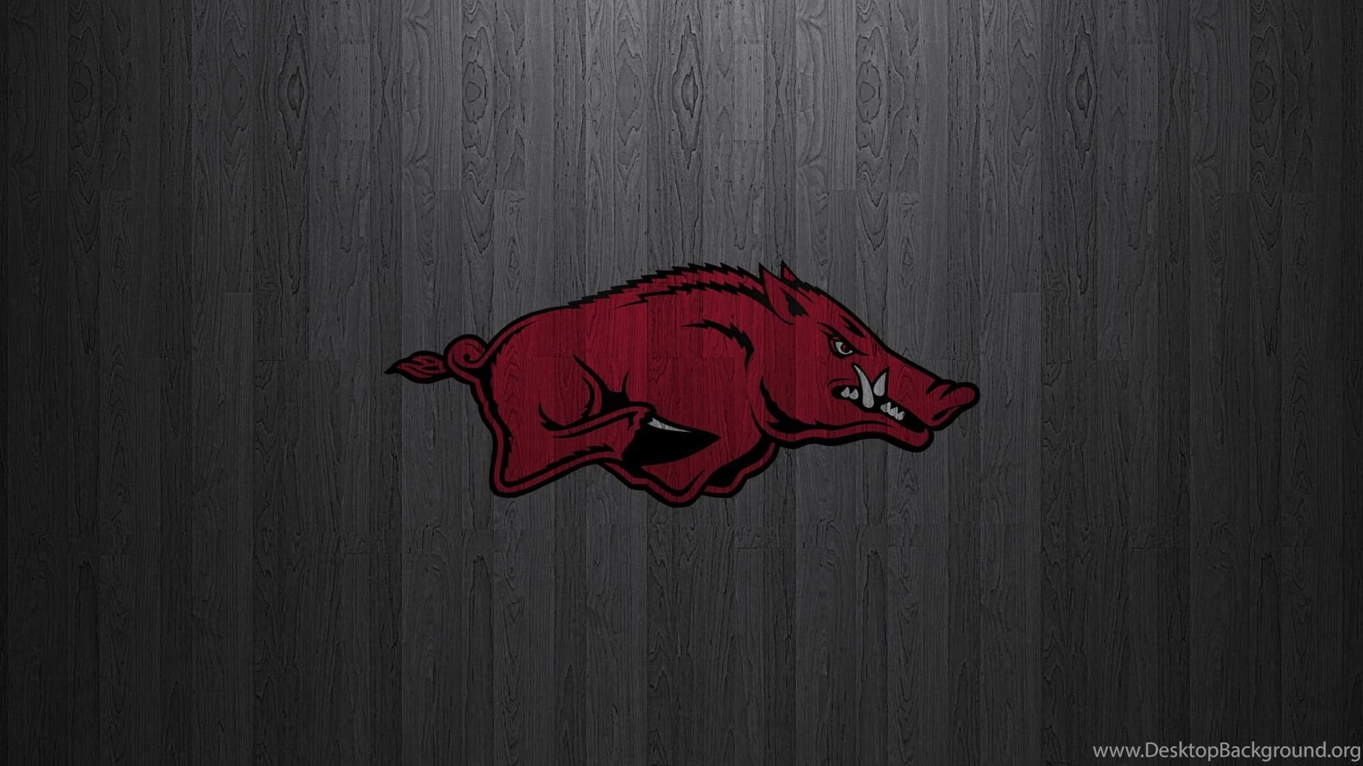 Arkansas Razorbacks Wallpaper HD Wallpapers Download Free Images Wallpaper [1000image.com]