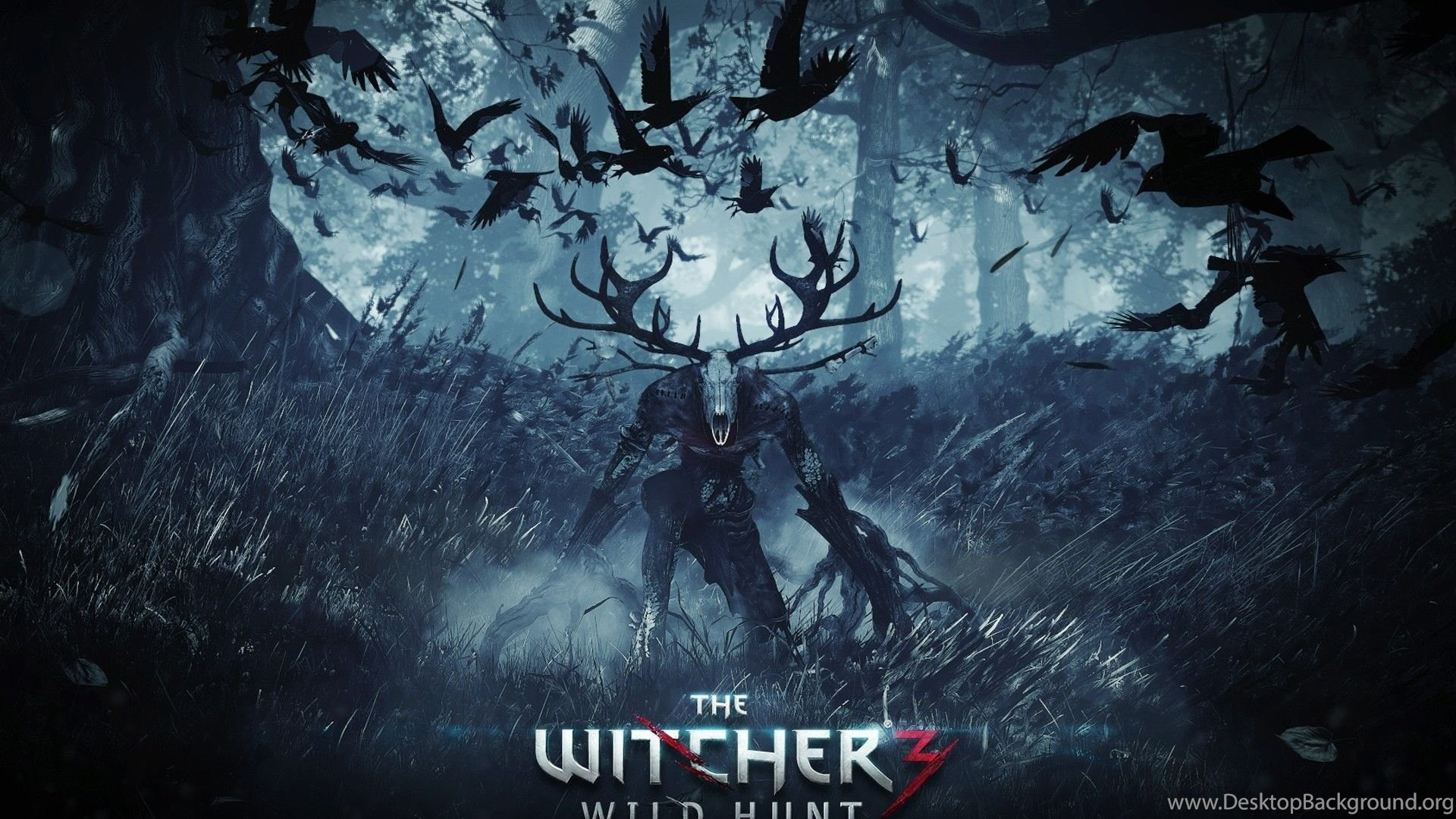 305 the witcher 3: wild hunt hd wallpapers desktop background