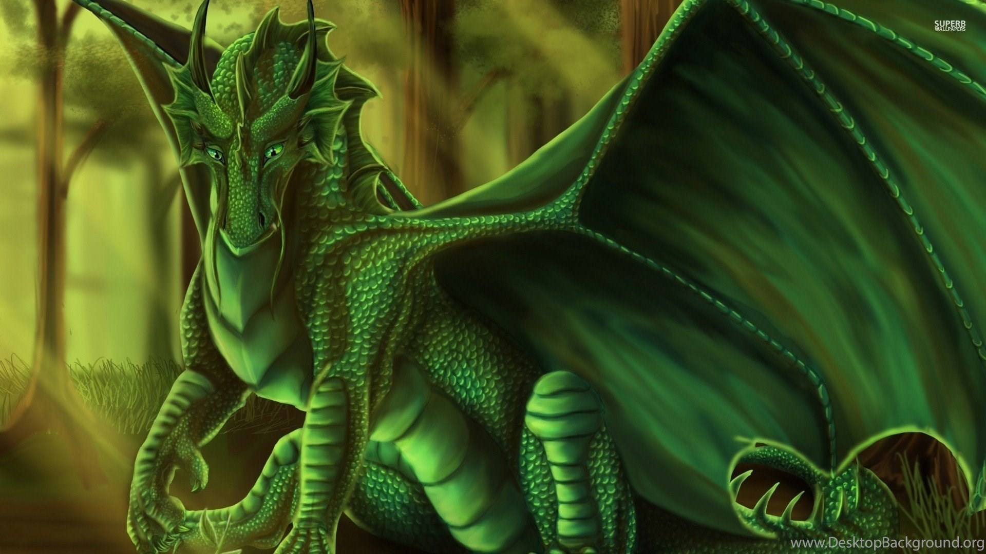 Green Dragon Wallpapers Fantasy Wallpapers Desktop Background