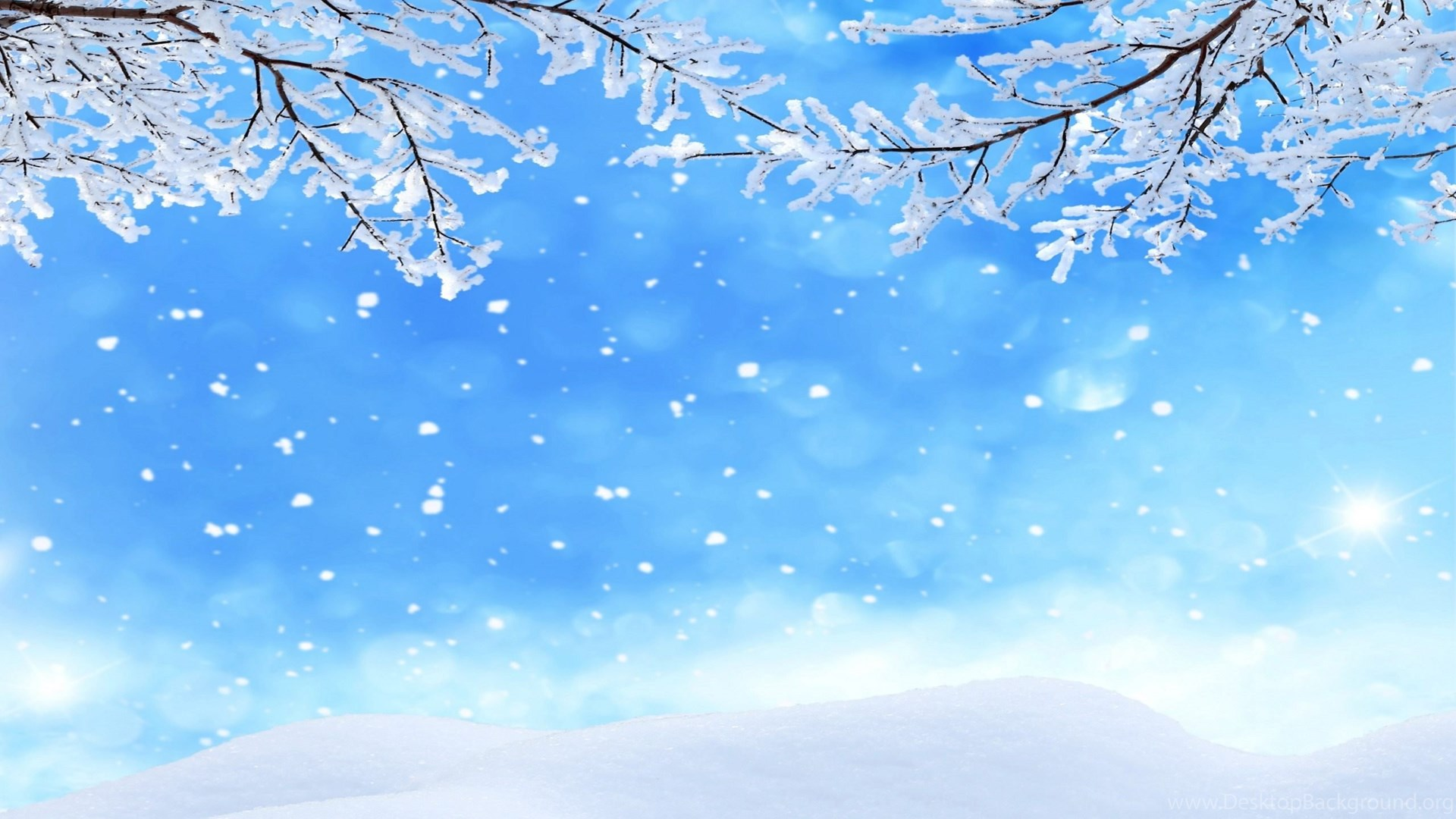 Winter Backgrounds Snowflakes Wallpapers HD Free Download