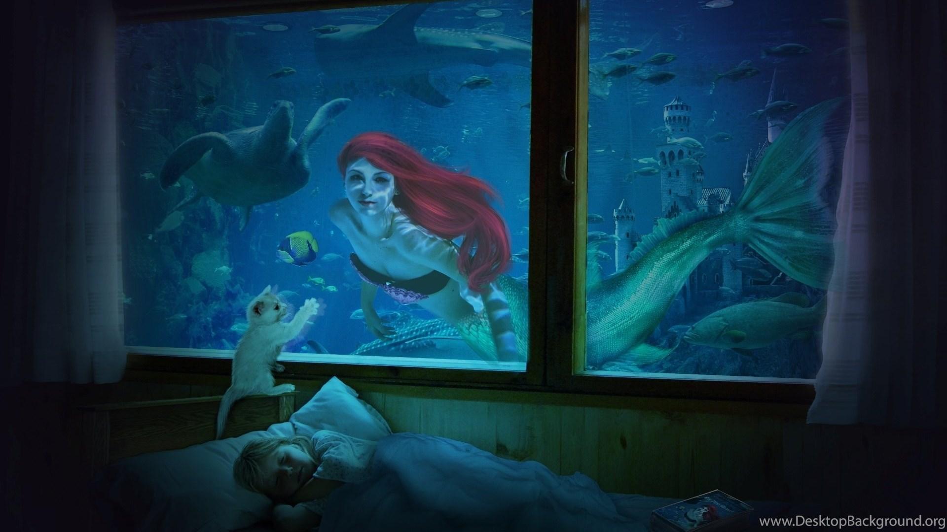 The Little Mermaid Q Wallpapers Desktop Background