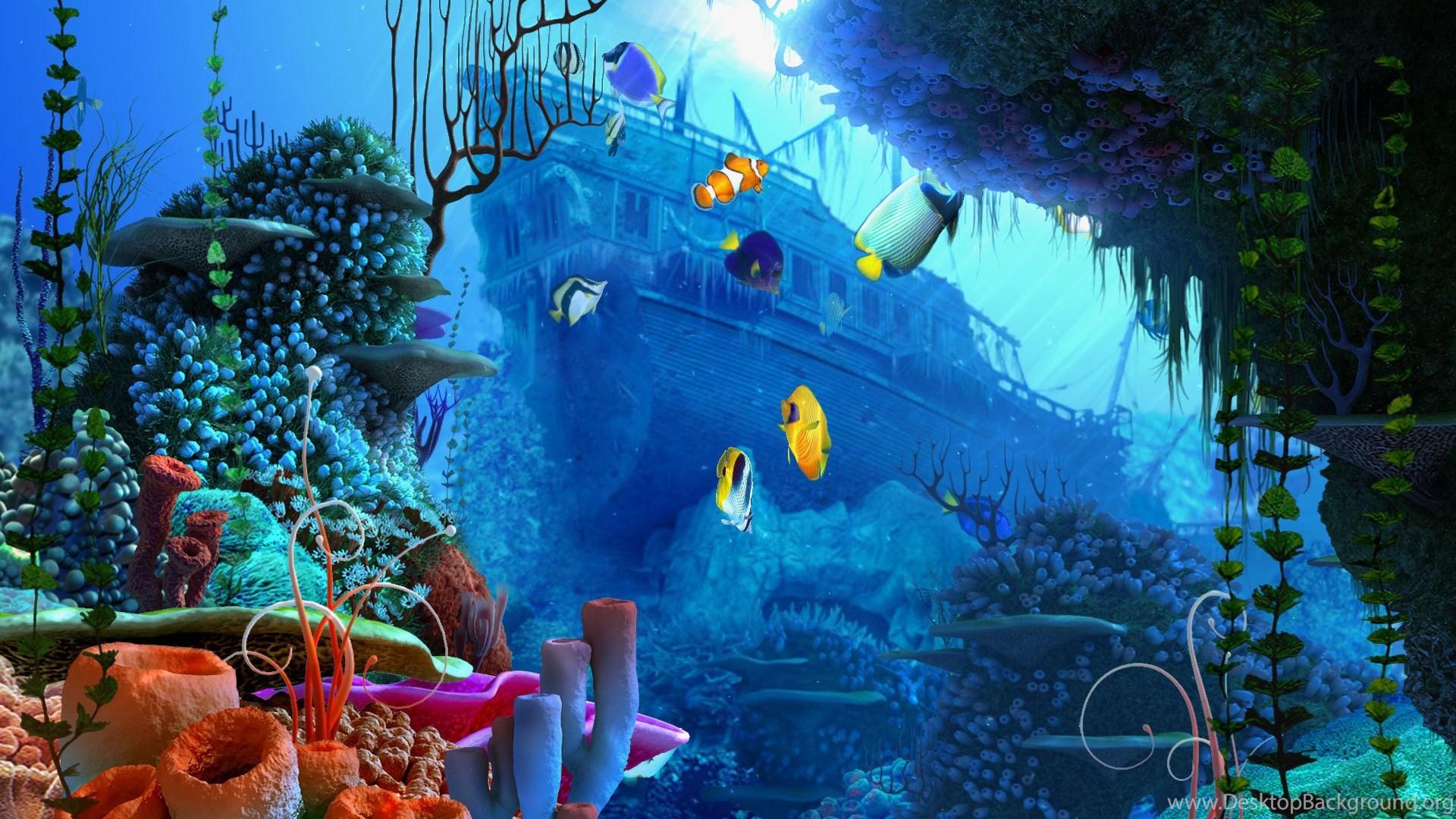 Hd Aquarium Fish Tank Computer Wallpapers Full Size Desktop