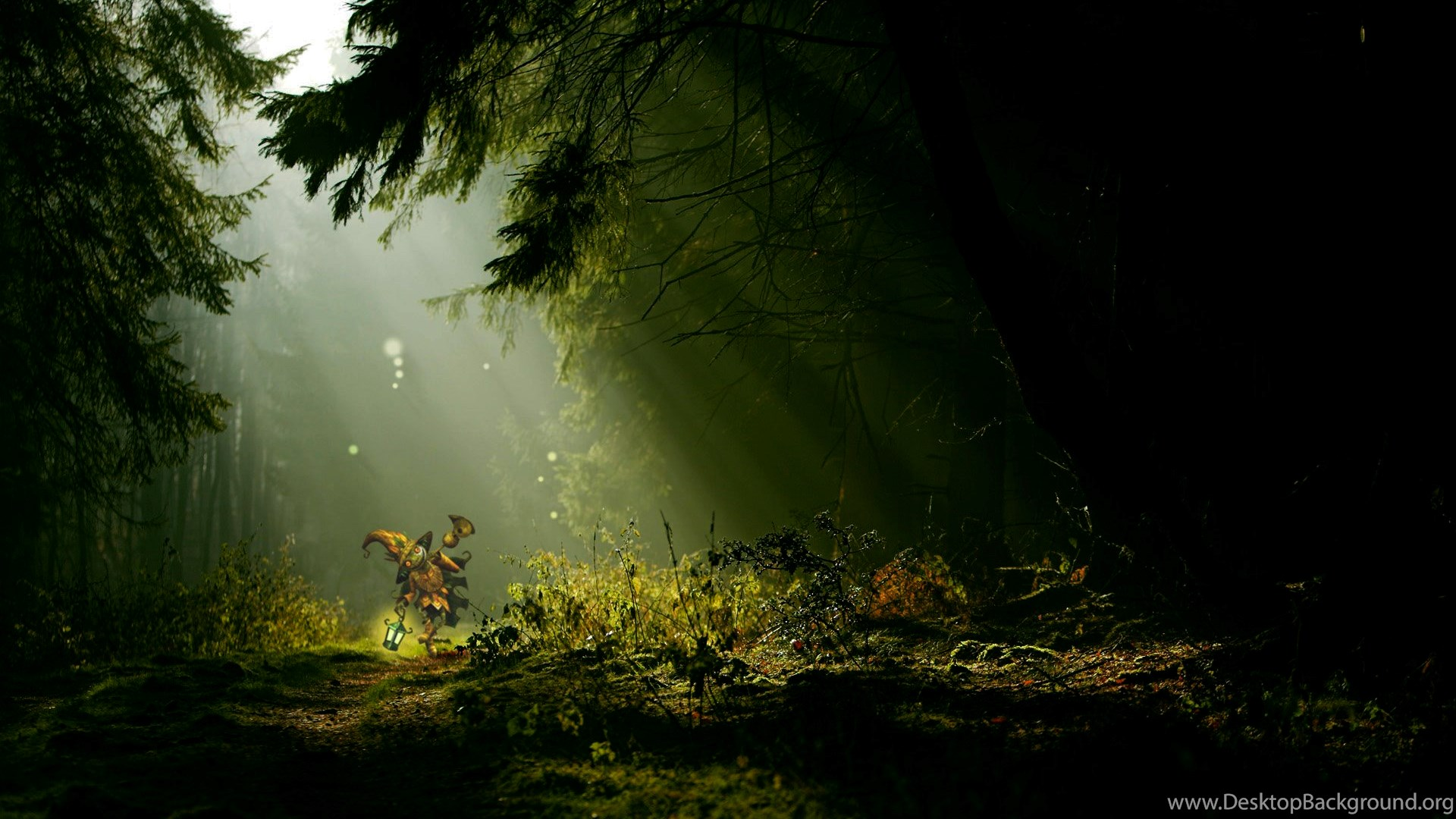 Night Forest Animals Desktop Background