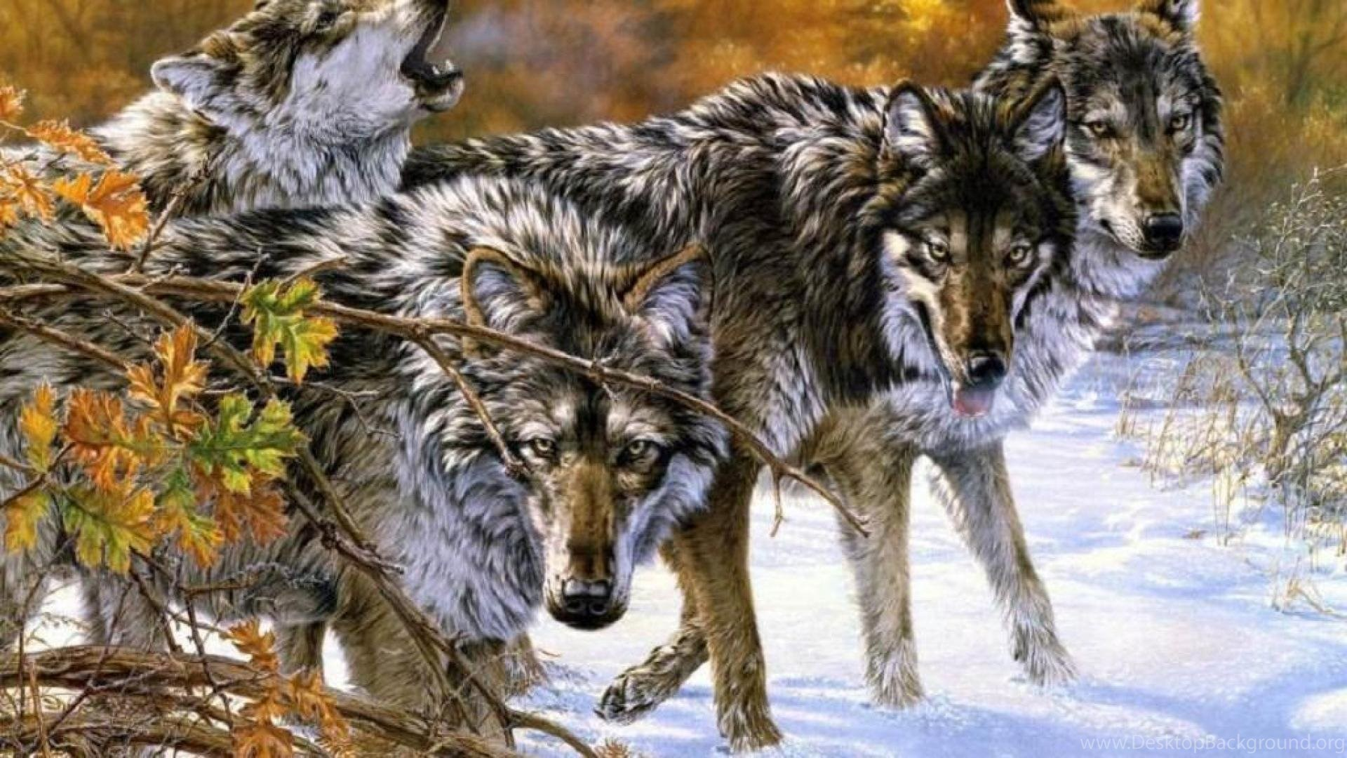 Wolf Pack Wallpaper Desktop Background