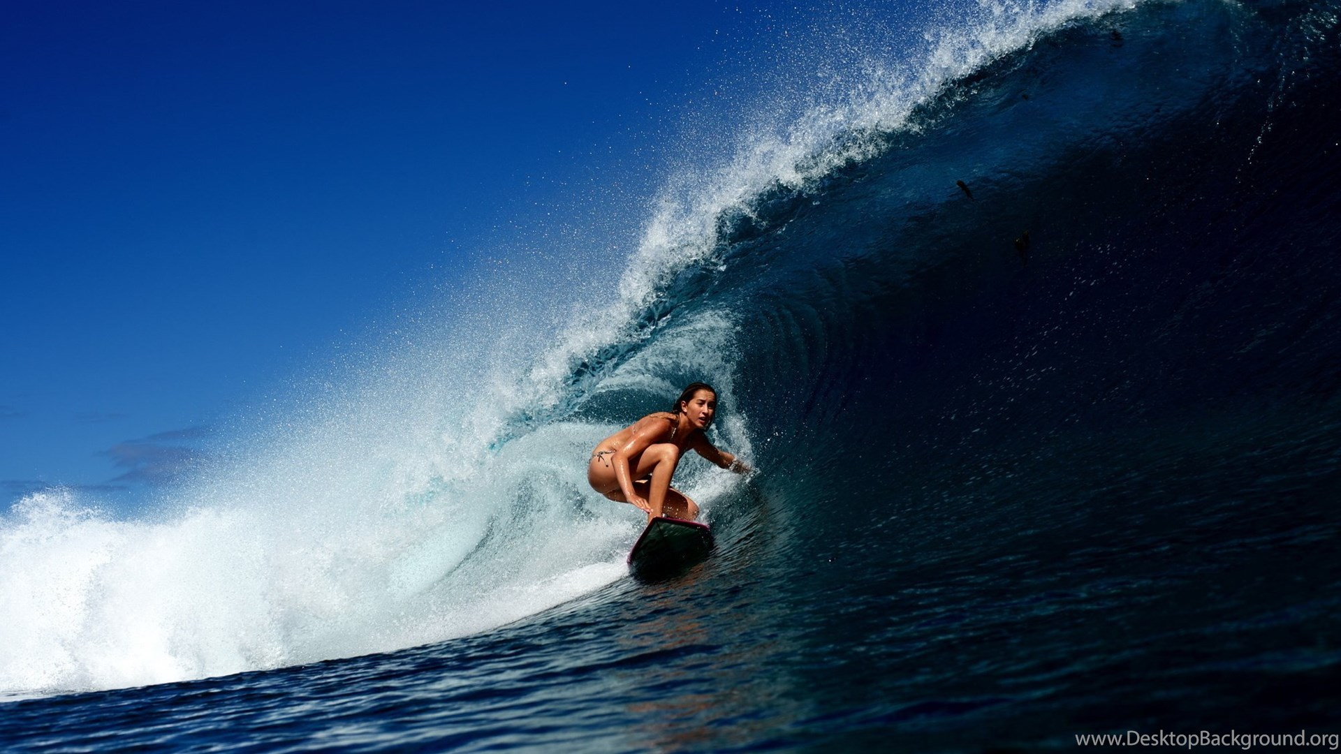 Wave Surfing Girl Surfing Ocean Bikini Sexy Babe Wallpapers