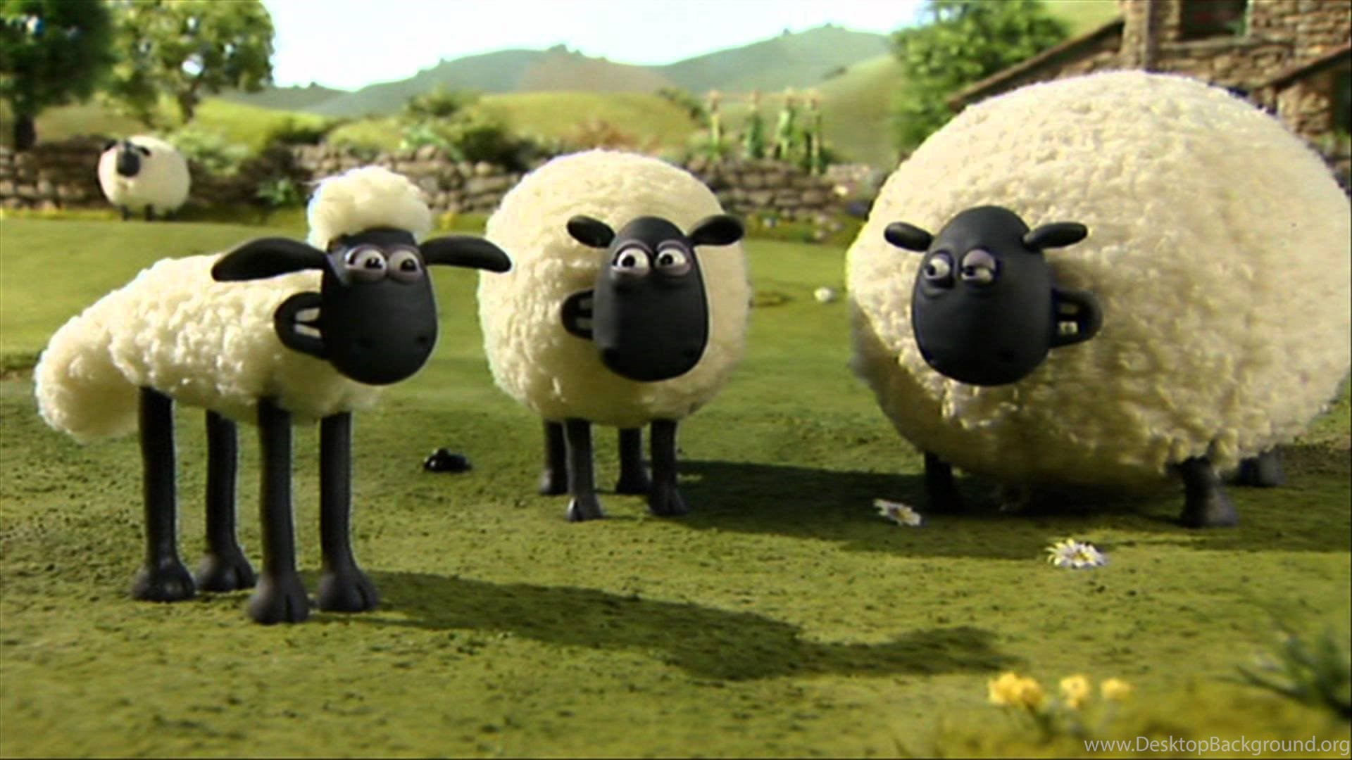 Shaun The Sheep HD Wallpapers For Desktop Download Background