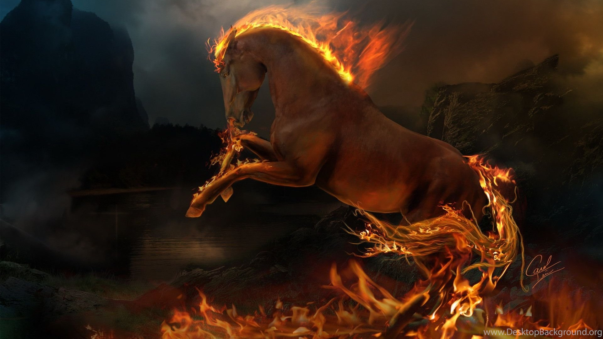 Free Horse Wallpapers For Computer Wallpapers Cave Desktop Background
