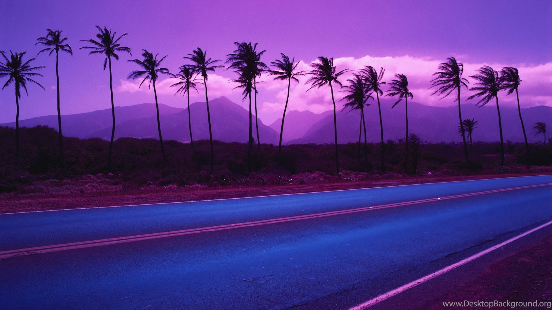 Stupendous Wallpapers Gmail Coconut Trees Beach Purple 1920X1200 Download Free Architecture Designs Scobabritishbridgeorg