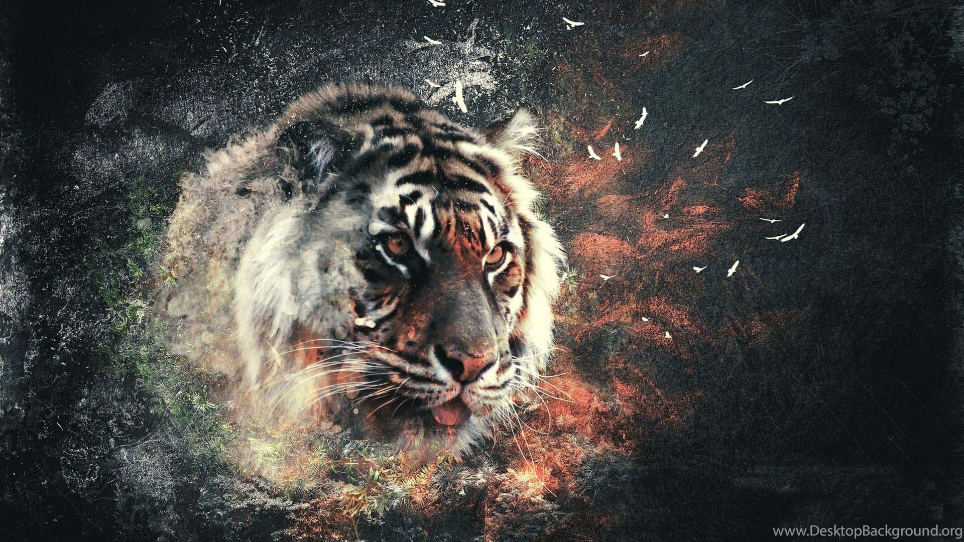 3d Tiger Wallpapers Wallpapers Hd Wide Desktop Background