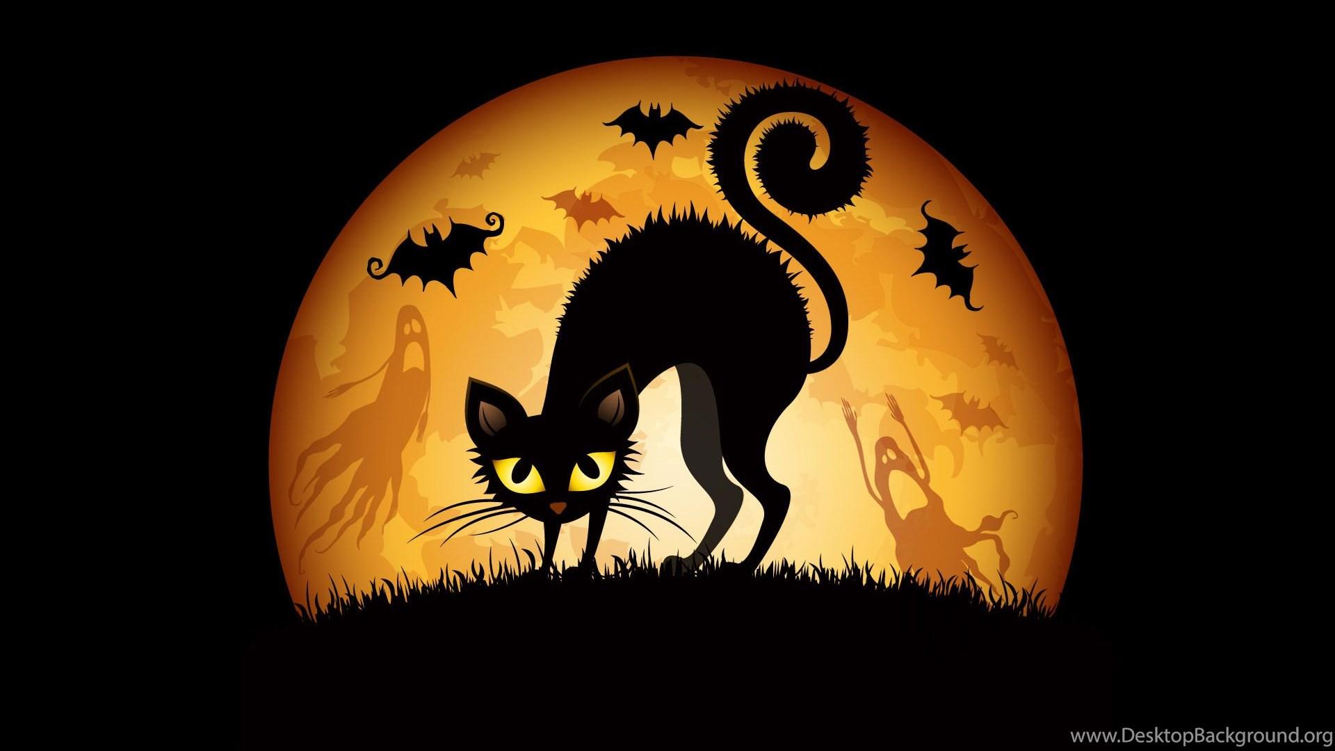 Halloween Cat Bat Wallpapers Desktop Background