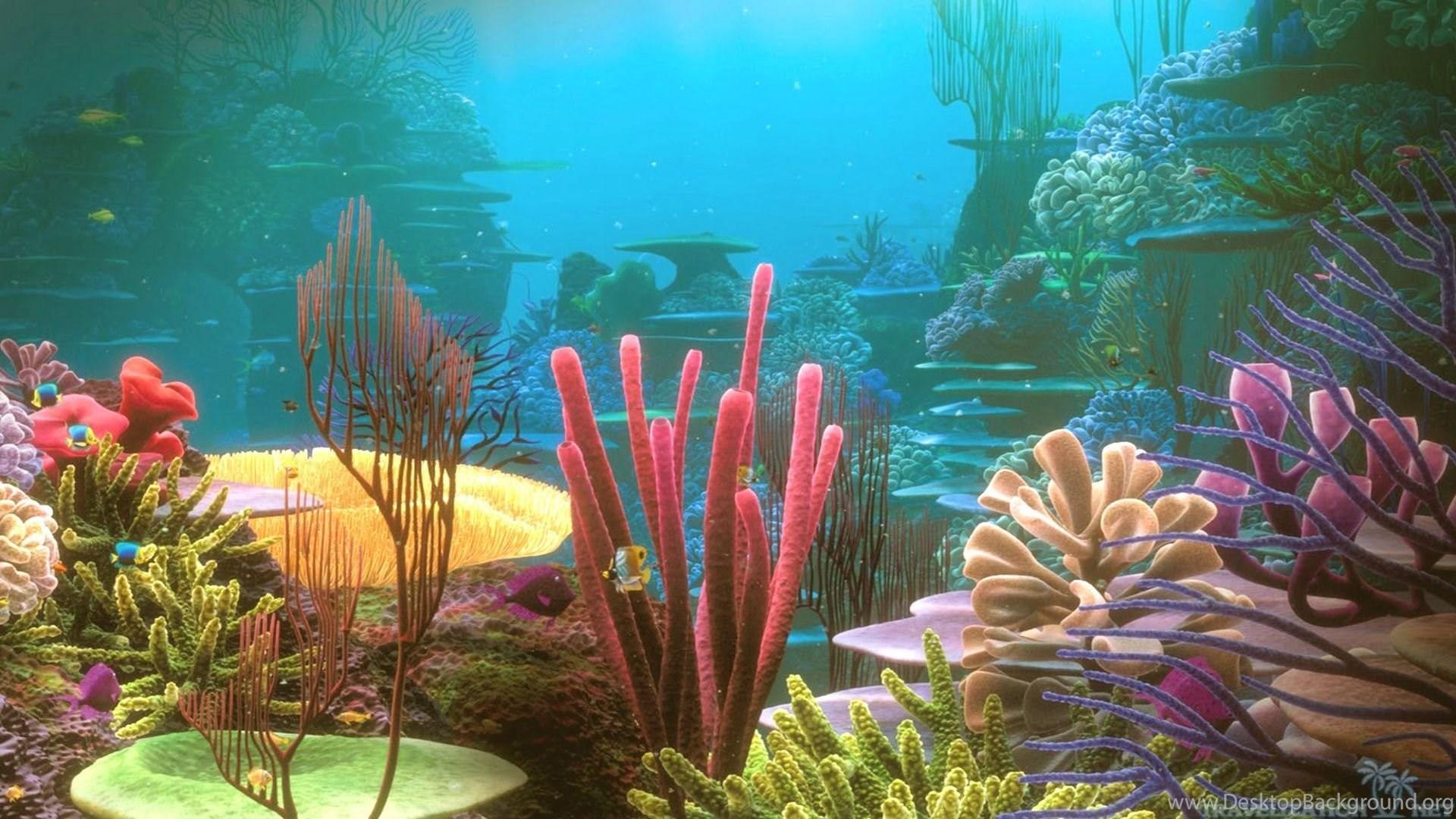 coral reef aquarium screensaver