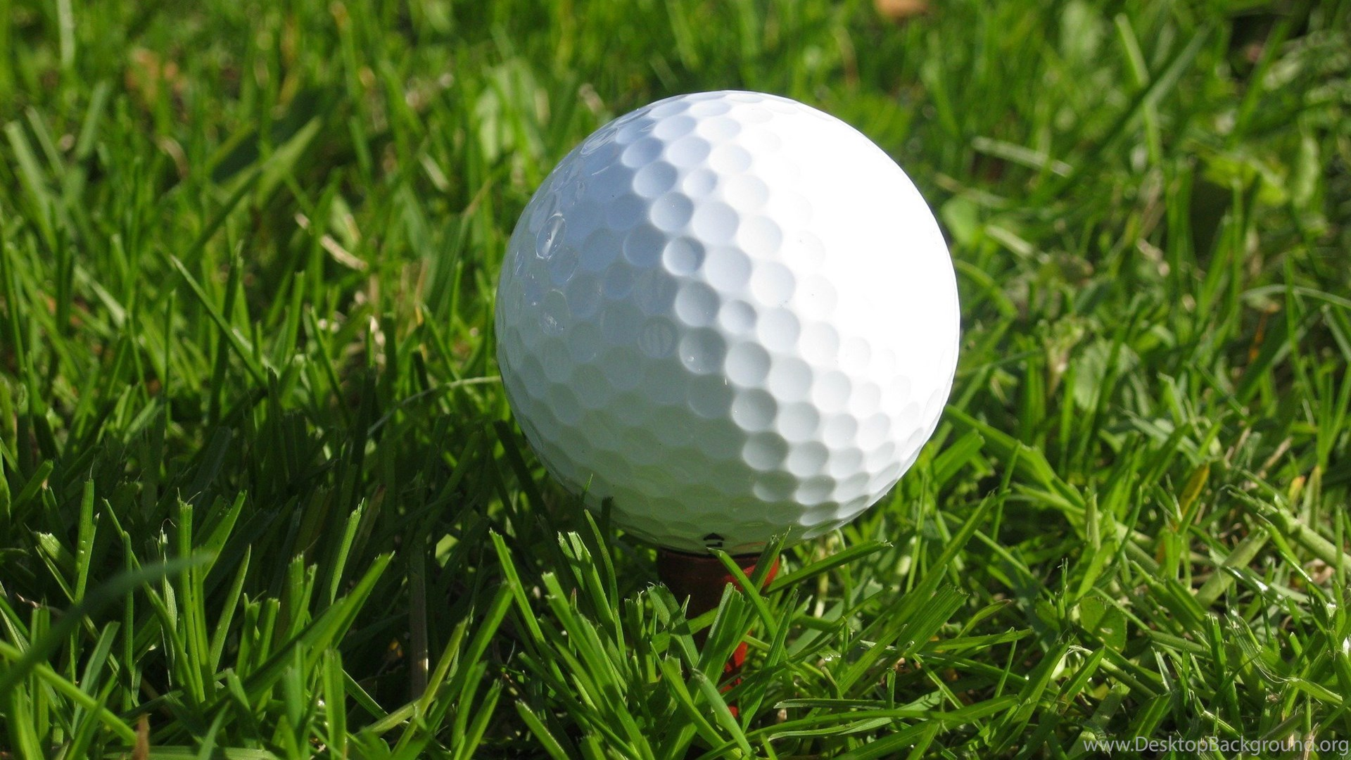 Free Golf Course Clip Art Wallpapers High Definition With Hd Desktop Background
