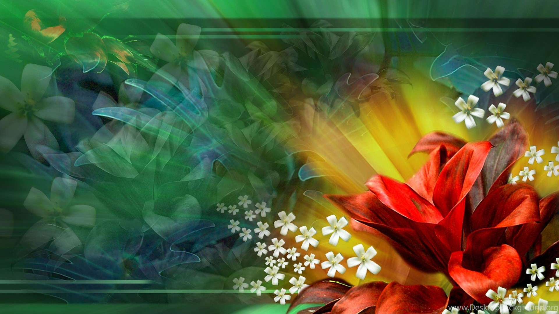 Red Flower Abstract Floral Single Green 1920x1200 Hd