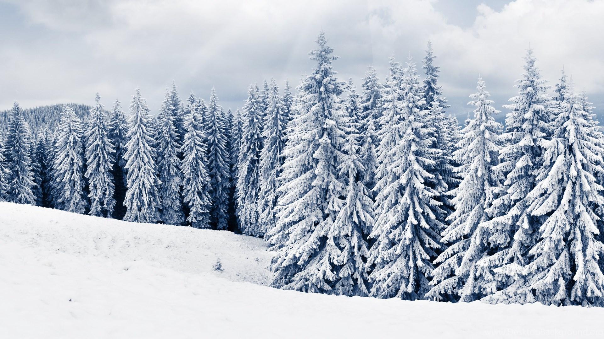 Winter Hd Desktop Wallpapers High Definition Fullscreen
