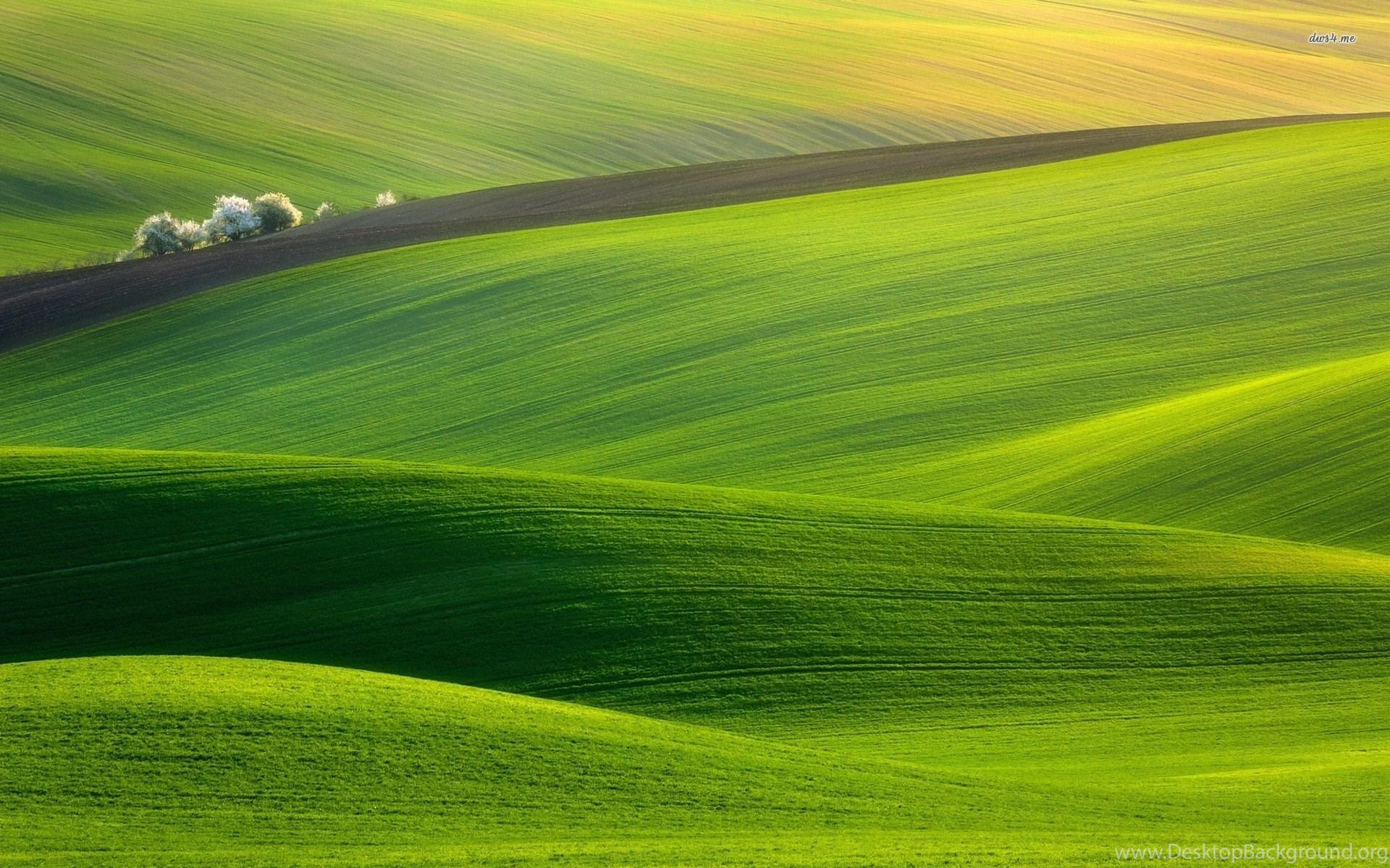 Зеленое поле возле горы  № 1077797 загрузить