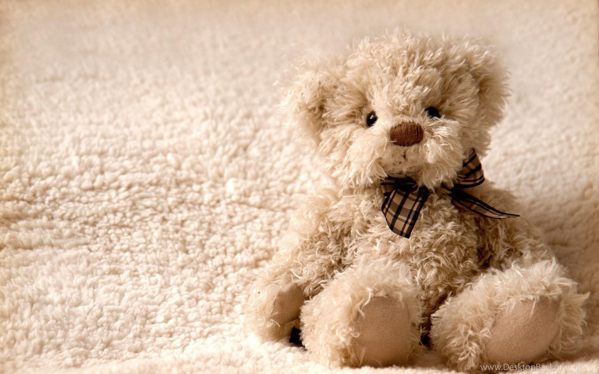 25 Romantic Teddy Bear Wallpapers Desktop Background