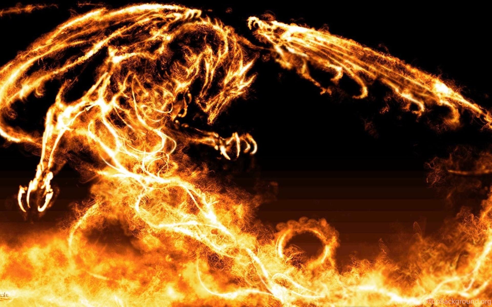 Cool Fire Dragon Wallpapers Feel Hearts Desktop Background