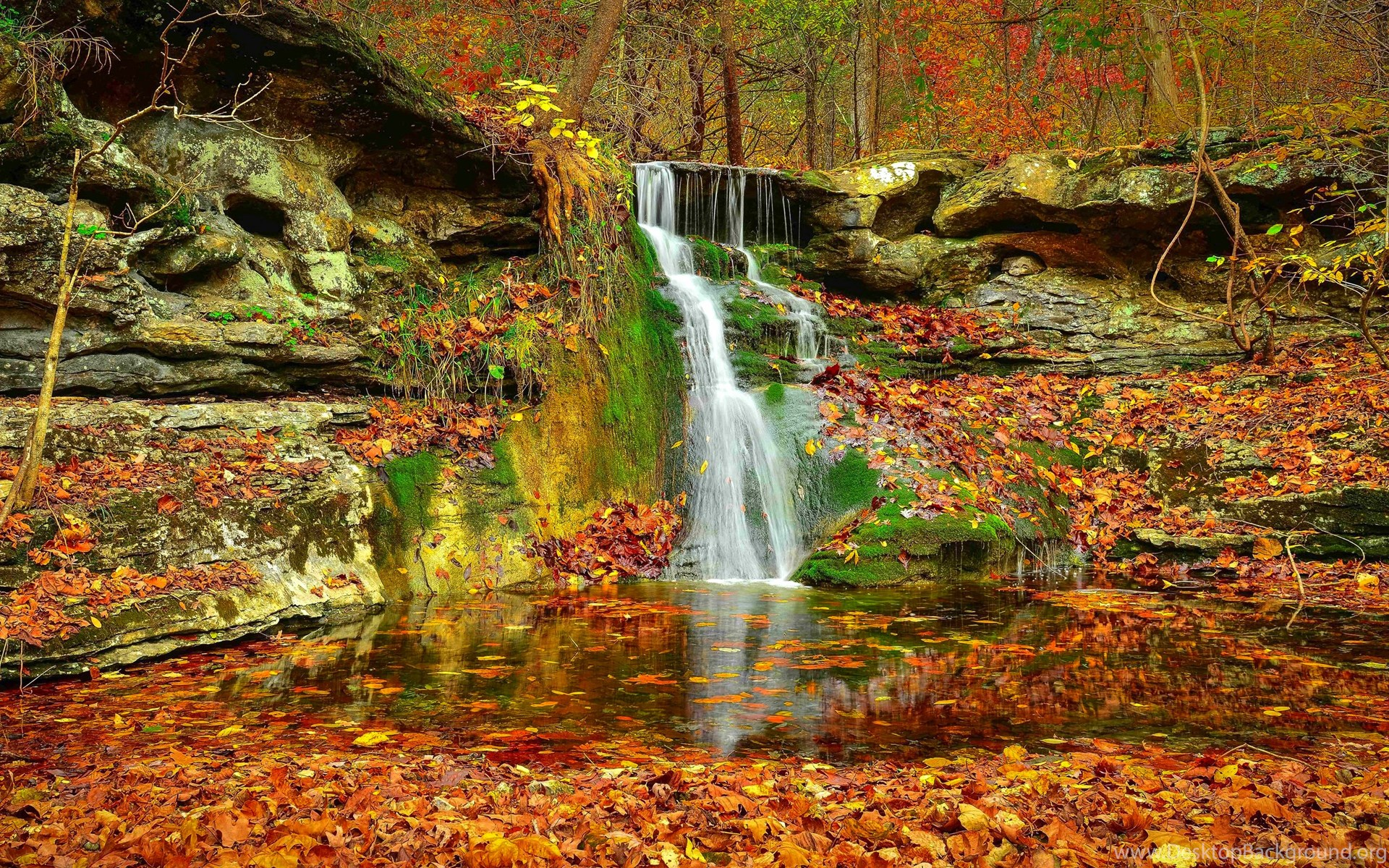 autumn fall waterfall nature leaves forest foliage stream rocks colorful 4k wallpapers desktop lovely landscape backgrounds background serenity natural 1080p