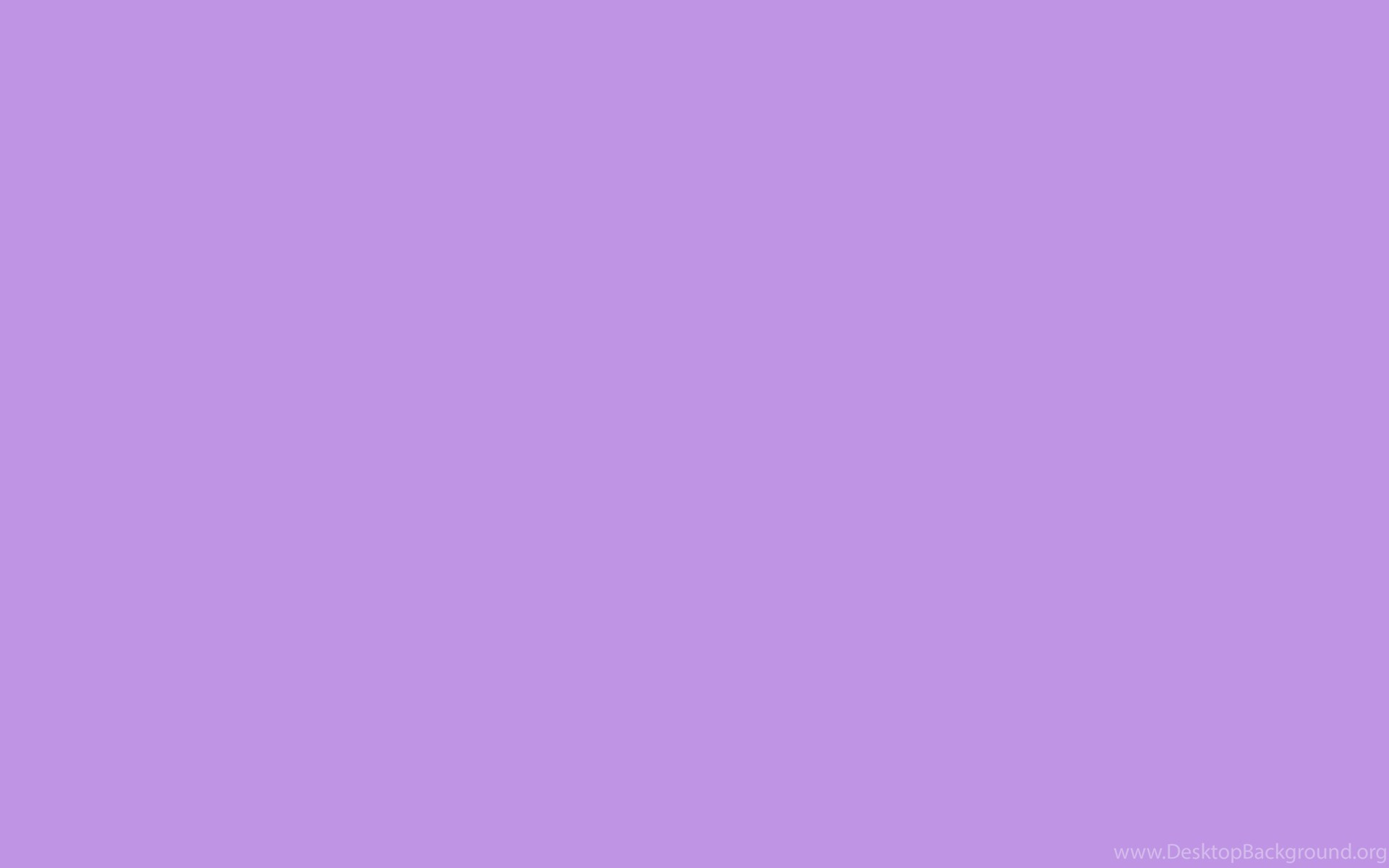 lavender background solid - HD 1280×800