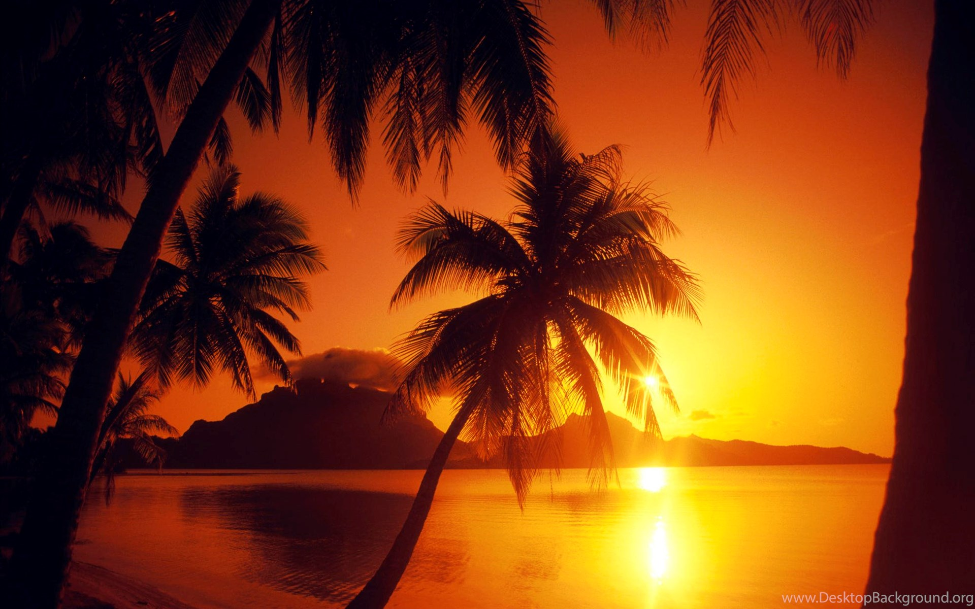 beautiful sunset wallpapers tropical paradise backgrounds desktop