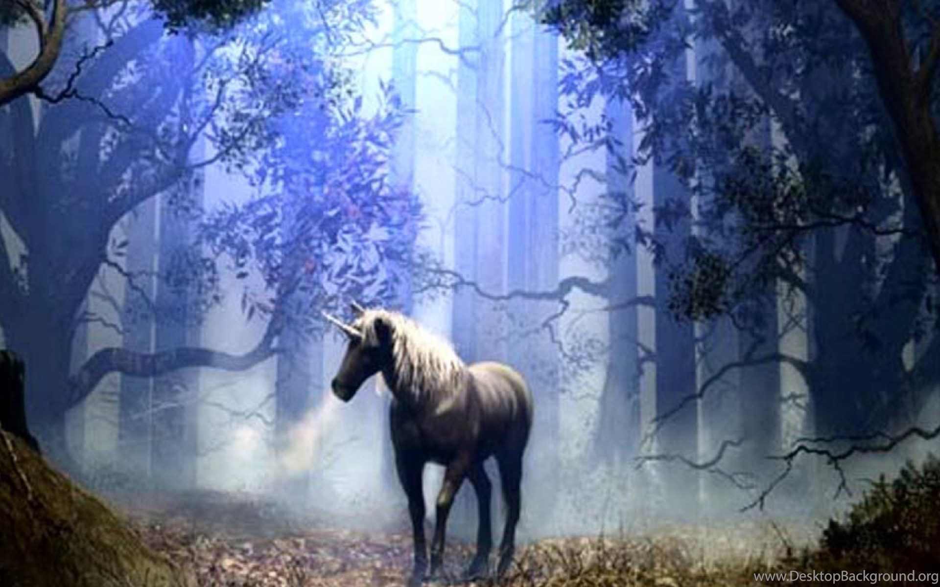Image Detail For Fantasy Ipad Wallpaper: Fantasy Horse Wallpapers For IPad Mini 2 Desktop Background
