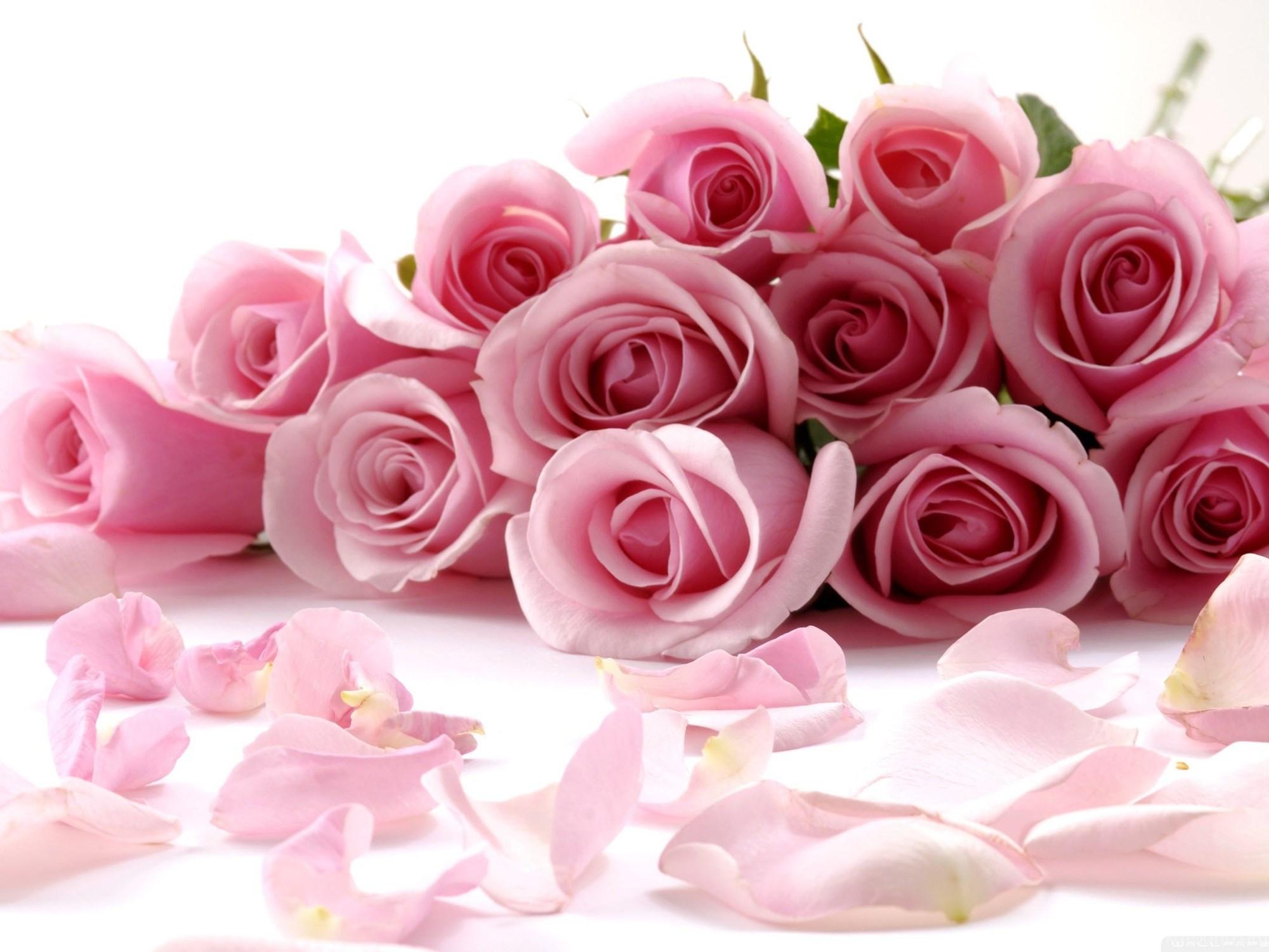 Фото открытка цветы с днем рождения
