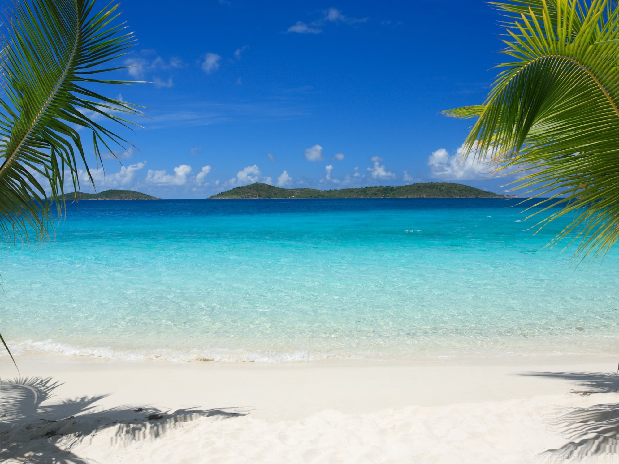Hammock On Beach Wallpapers: Tropical Beach Pictures Hammock Wallpapers For Iphone