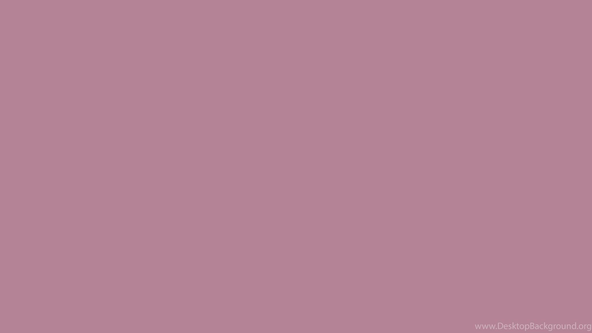 Solid color lavender 2560x1440 english lavender solid ...
