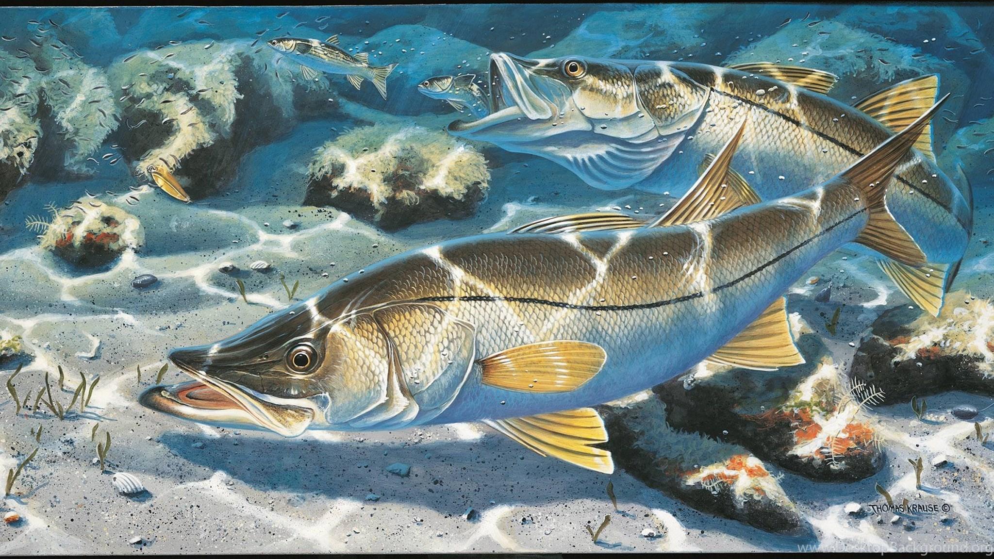 Картинки рыбная тема