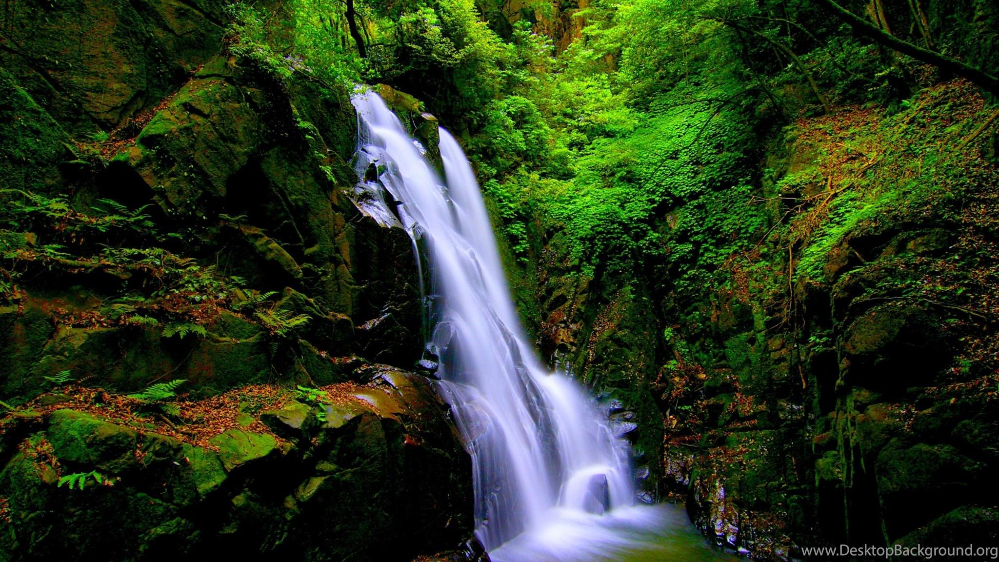 Waterfalls forest waterfalls green nature falls free - Waterfalls desktop wallpaper forest falls ...