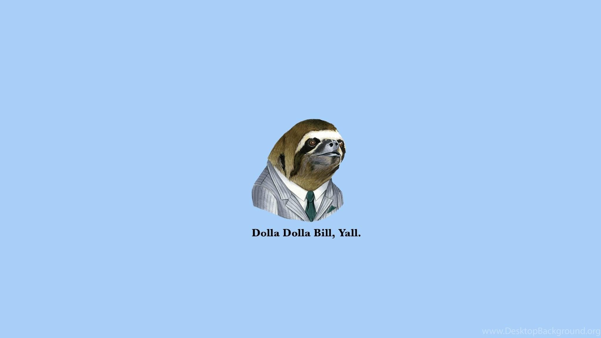 Download Wallpapers 2560x1440 Sloth Dollar Bills