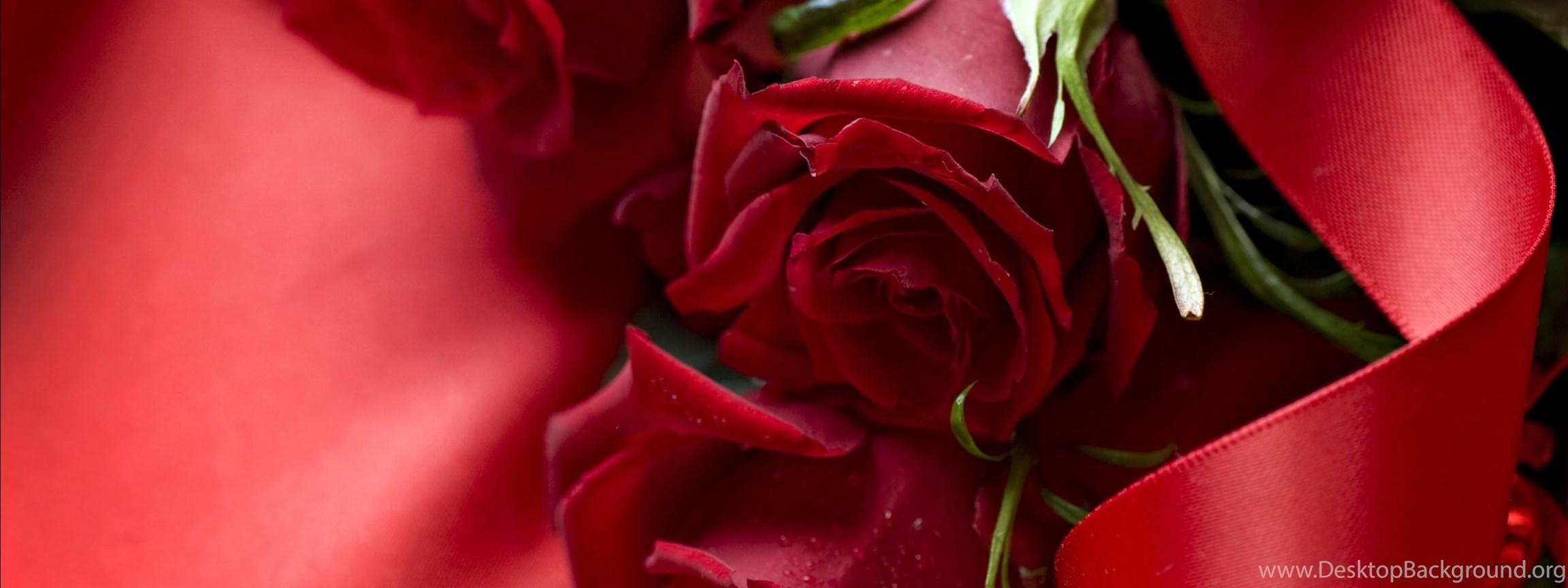 beautiful 3d red rose wallpaper desktop hd wallpapers