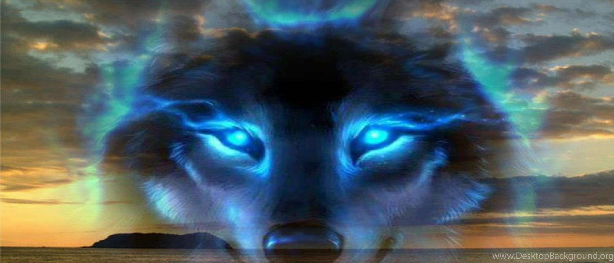 Blue Wolf Wallpaper Desktop Background