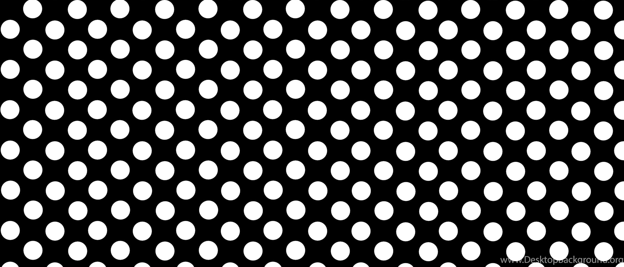 polka dot wallpapers border best hd wallpaper dots