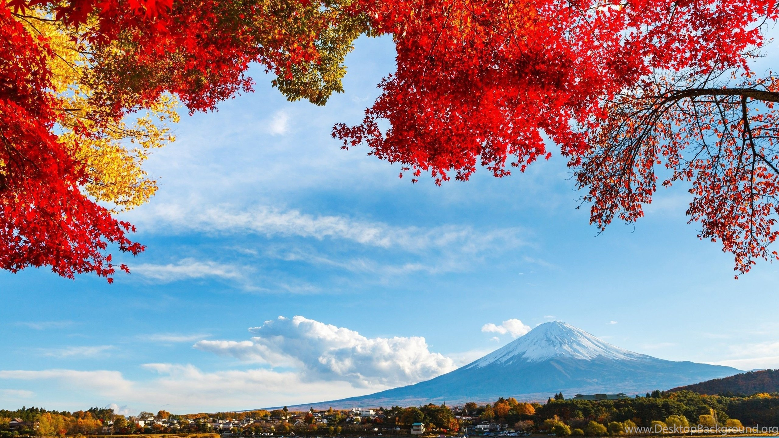 48 Mount Fuji HD Wallpapers Desktop Background
