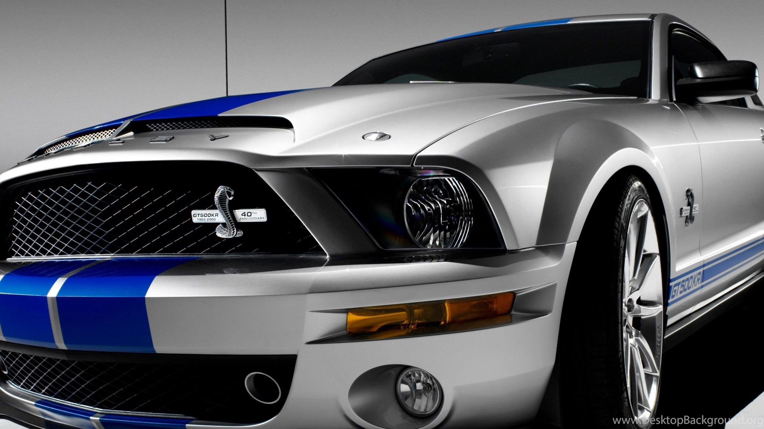 download shelby mustang gt500kr hd wallpapers for iphone 6 plus