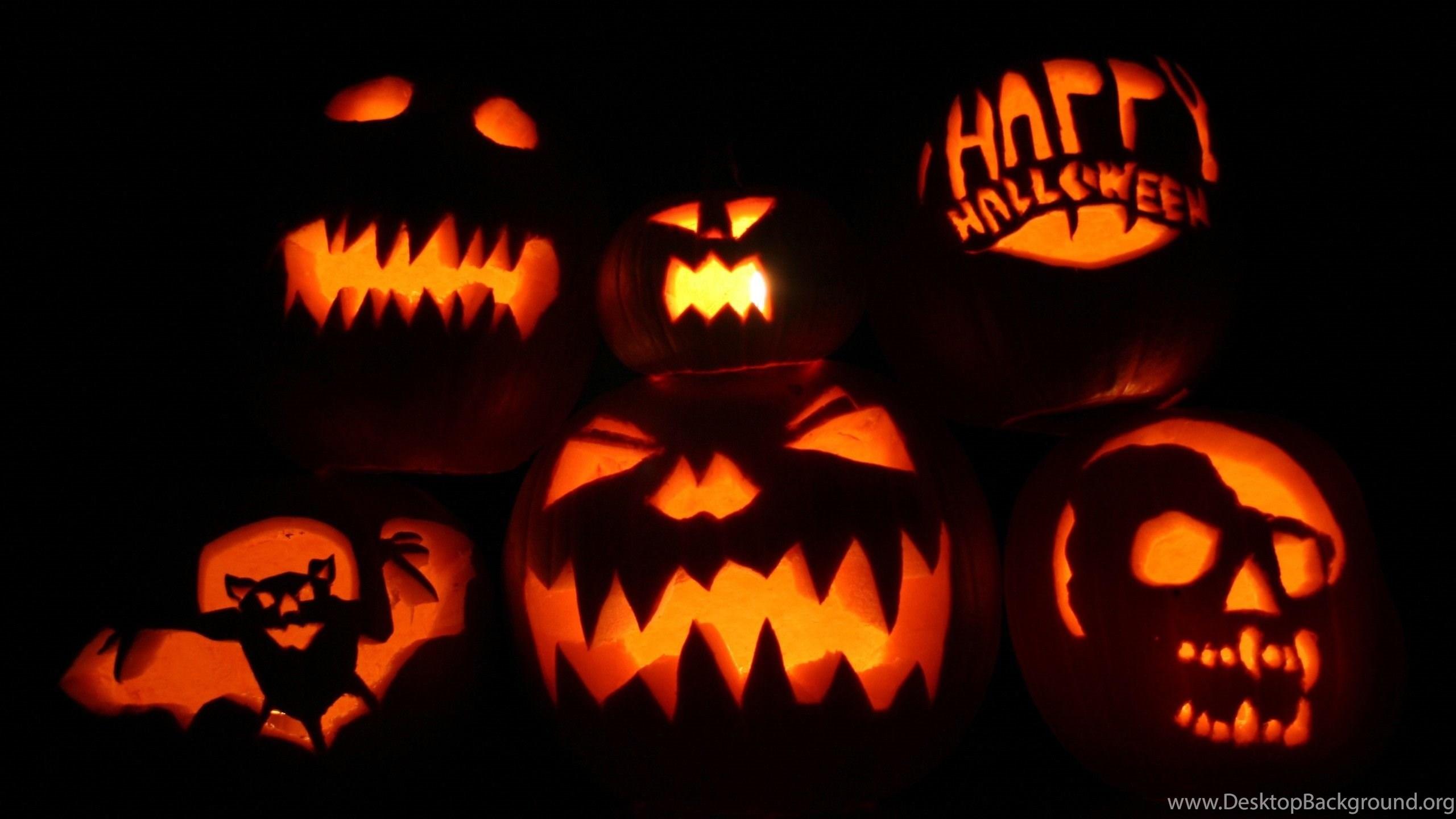 Fantastic Wallpaper Halloween Tablet - 192480_halloween-wallpapers-halloween-pumpkin-cartoon-photos-big_2560x1600_h  Image_481215.jpg