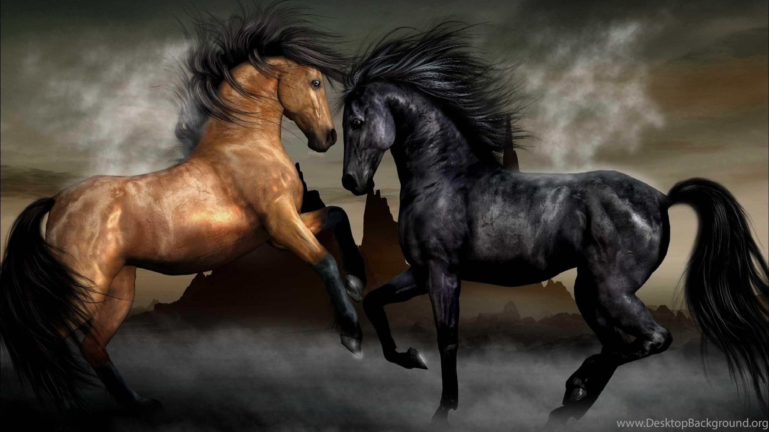 top 20 horse wallpapers hd best collection for desktop desktop
