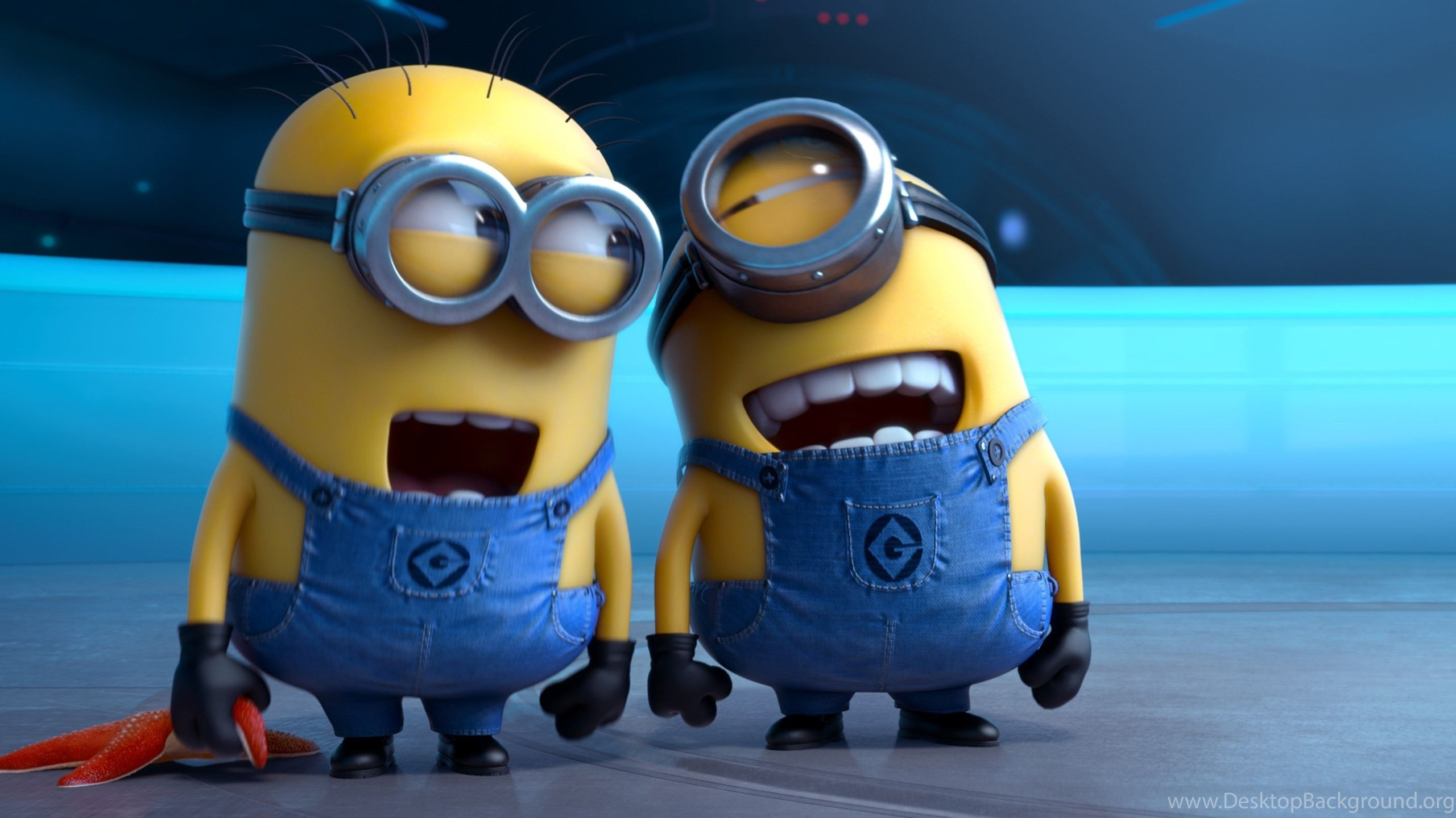 Minion Of Despicable Me Wallpapers Hq Photos Desktop Background