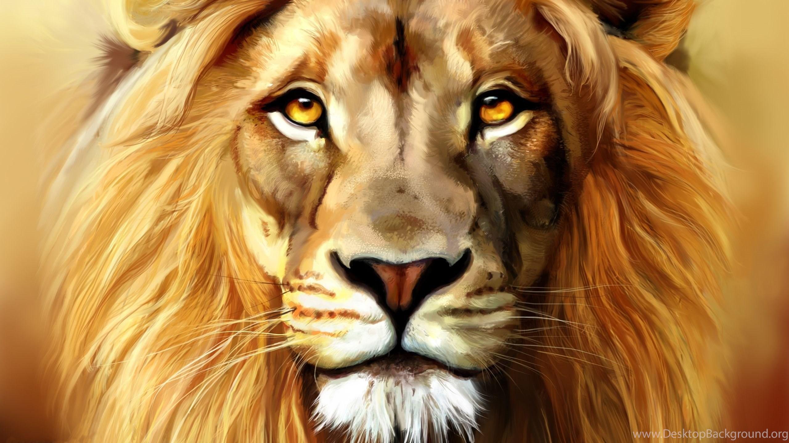 Lion Wallpapers Full Hd Desktop Background